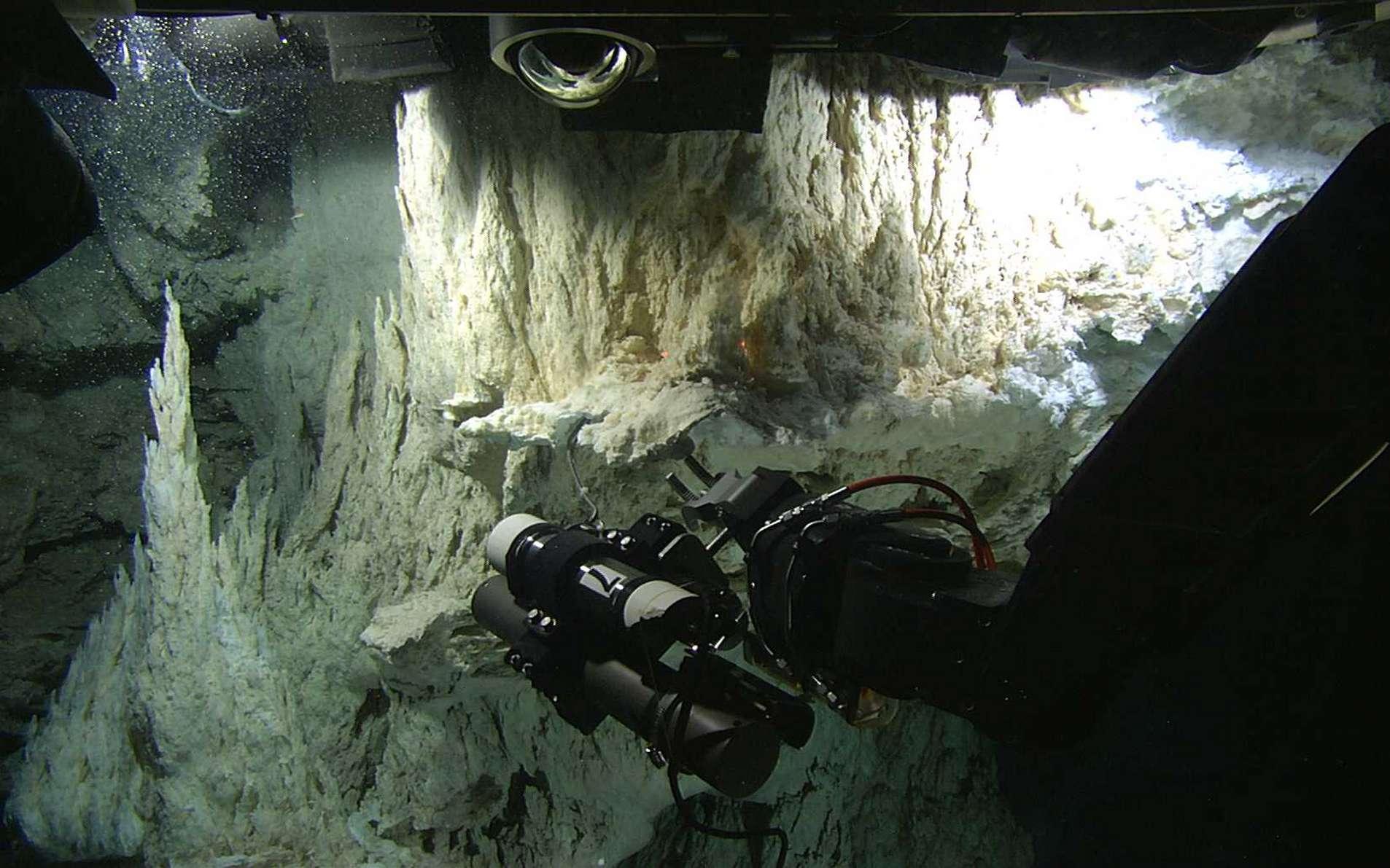 Le champ de cheminées hydrothermales découvert en décembre 2000 dans l'Atlantique nord. © Washington University