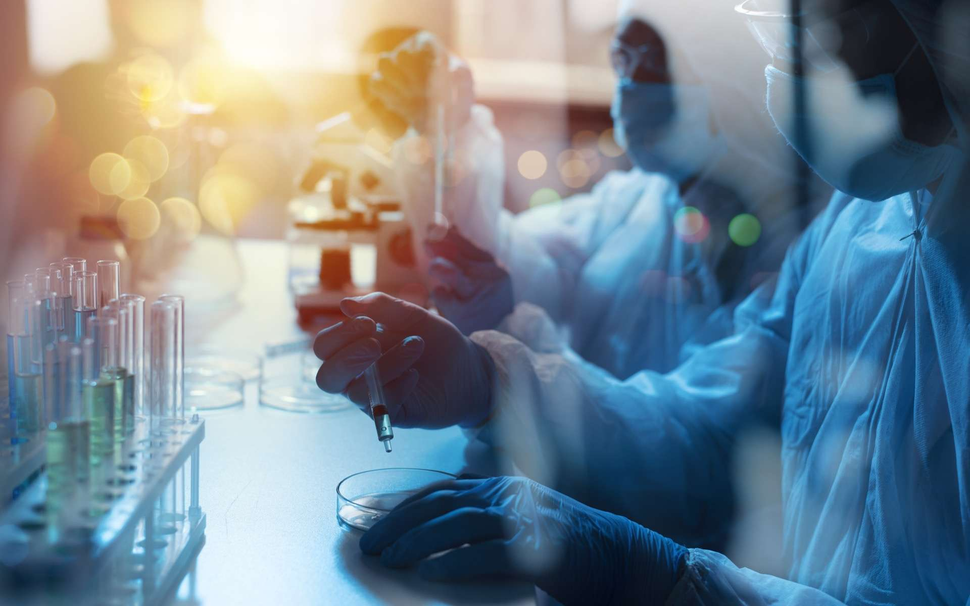Des leurres biologiques sous forme de vésicules pourraient stopper l'infection du virus SARS-CoV-2. © alphaspirit, Adobe Stock