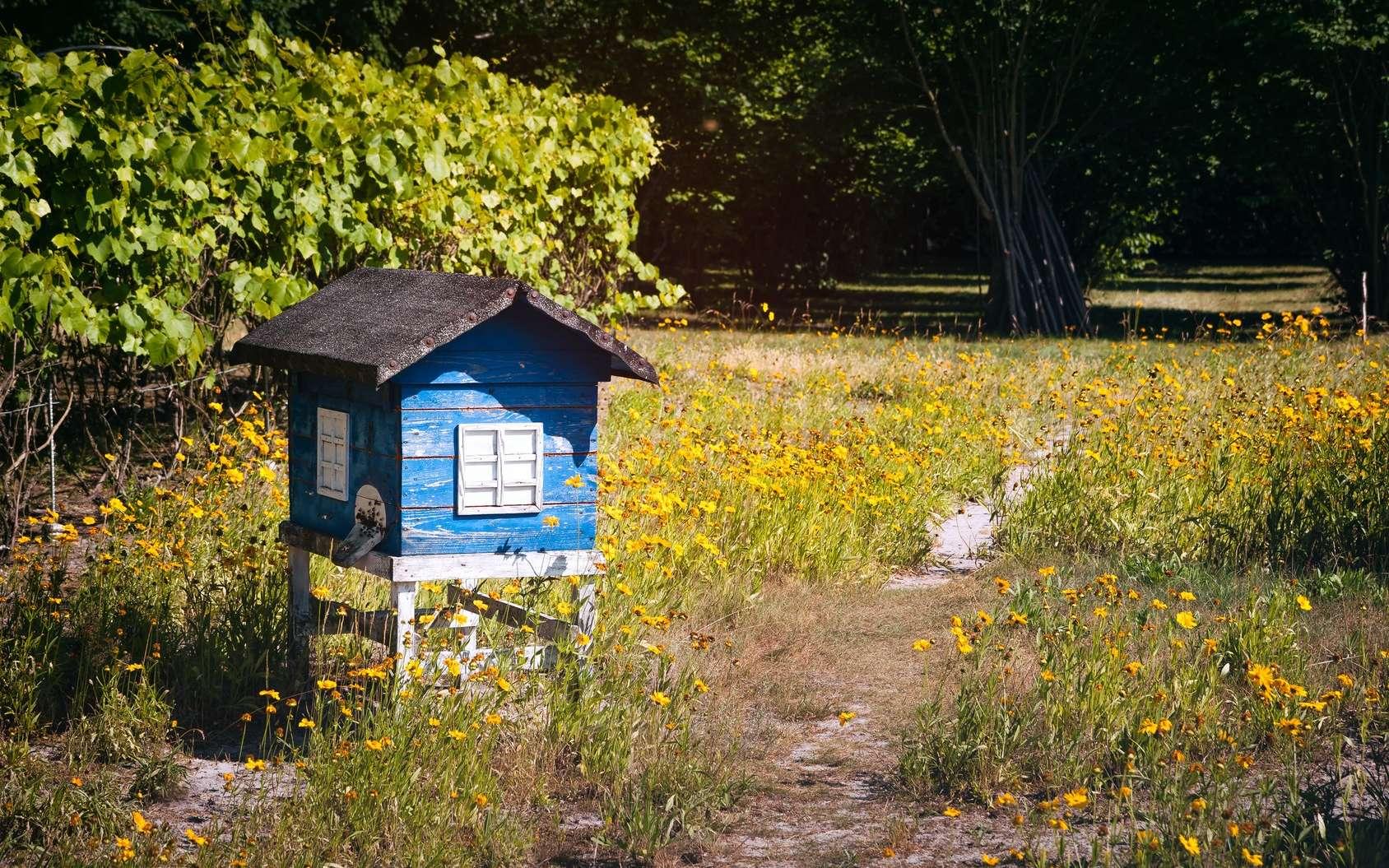 Une ruche dans son jardin, pourquoi pas ? © Plrang Art, Fotolia