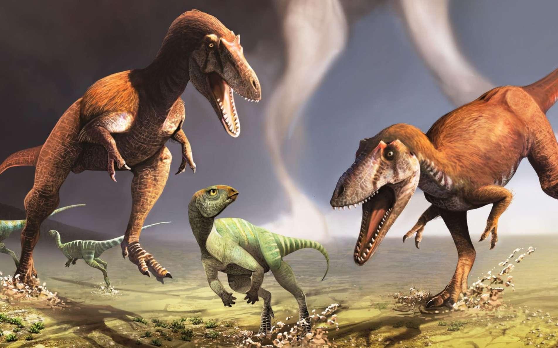 Une vue d'artiste du nouveau genre de théropodes découvert en Patagonie, Gualicho shinyae. Ses membres semblables à ceux du T-Rex s'expliquent peut-être parce qu'ils étaient mieux adaptés au type de chasse pratiqué par ces animaux carnivores. © Jorge González, Pablo Lara