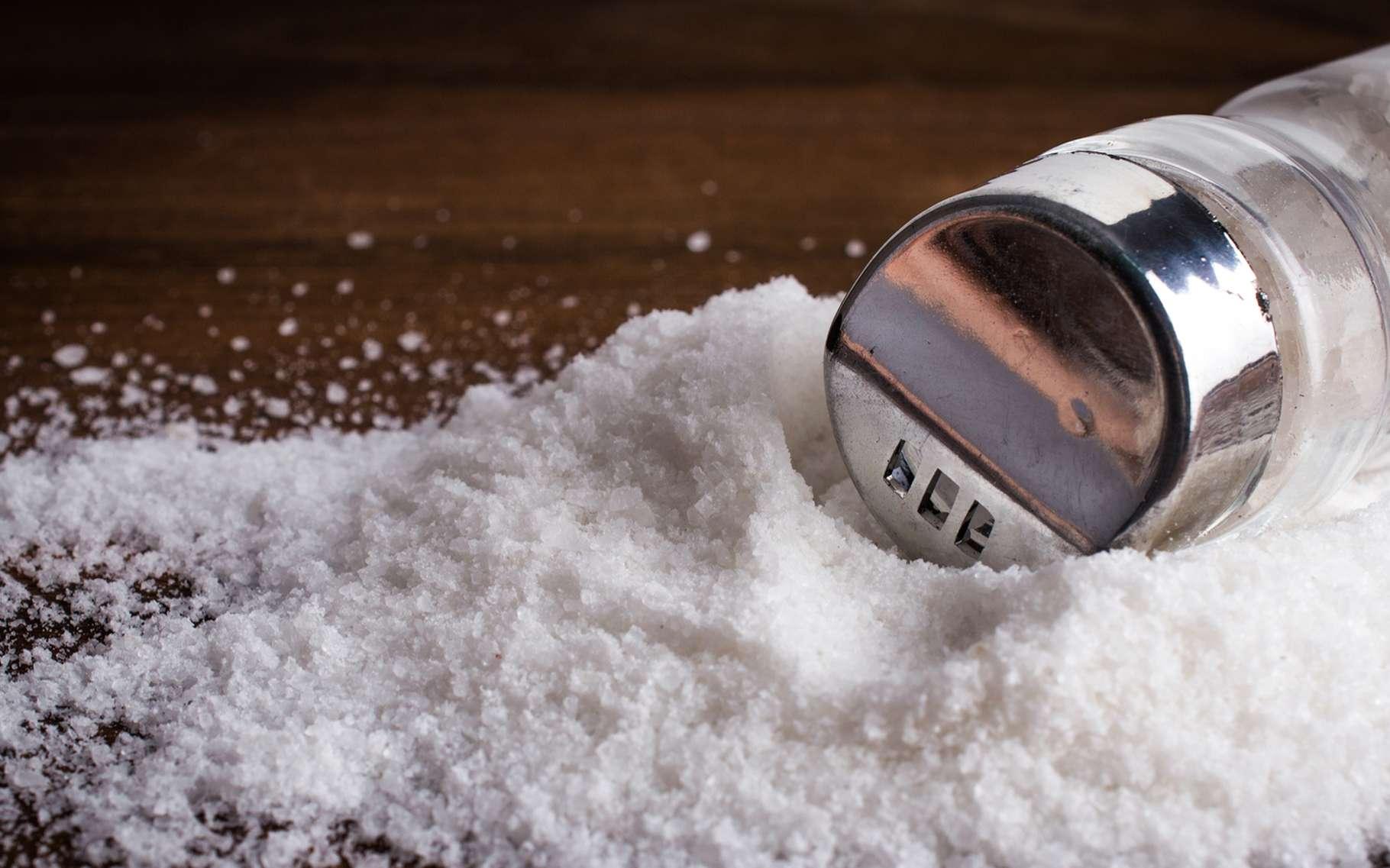 Ce sont des liaisons ioniques qui permettent de former le sel de table. © HandmadePictures, Shutterstock