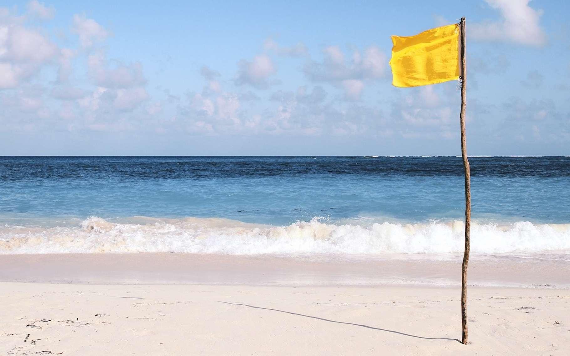 Sur la plage, la couleur des drapeaux donne des indications de sécurité. © Foundry, Fotolia