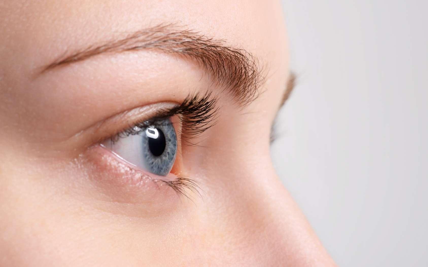 À quoi servent les sourcils ? © chettythomas, fotolia