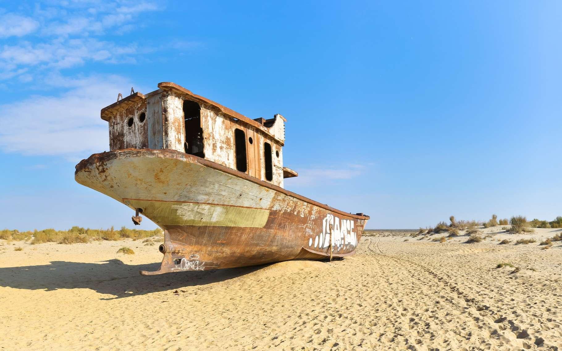 L'évolution de la mer d'Aral, située en Asie centrale, est inquiétante. Si la partie nord s'est remplie suite à la construction d'une digue, au sud, la mer est quant à elle asséchée. © alsem, Shutterstock