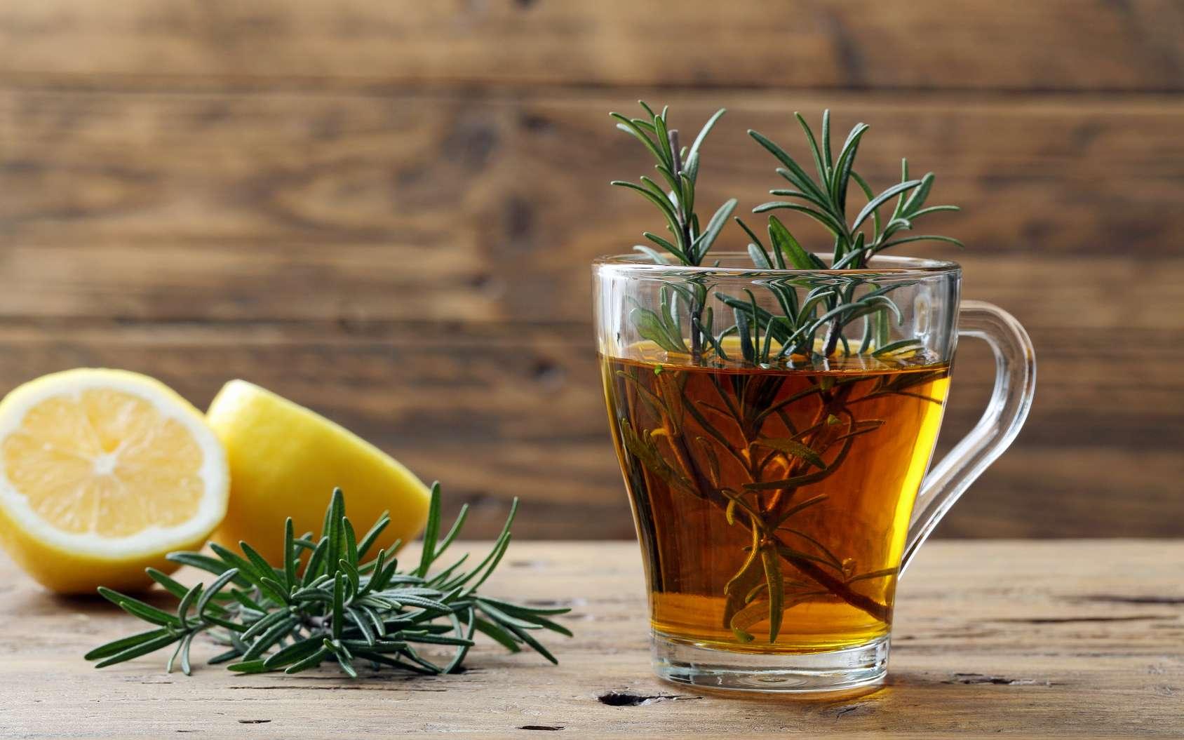 Le romarin est une plante adaptogène. Elle aide les organes à mieux fonctionner et facilite la digestion en réduisant les ballonnements. © denio109, fotolia