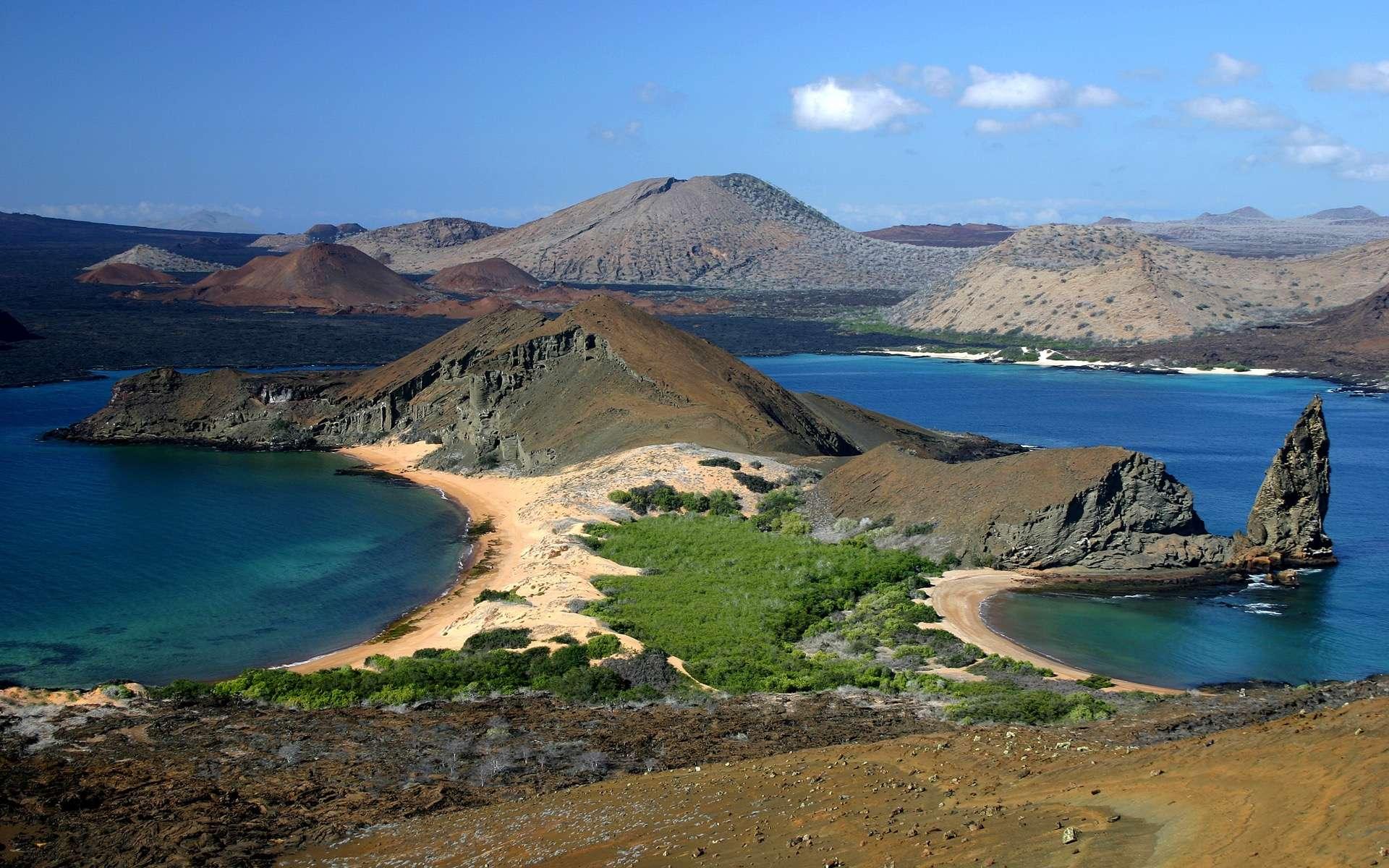 L'archipel des Galapagos et son parc national renferment l'un des écosystèmes les plus fragiles mais aussi les plus riches du monde. Trente nouvelles espèces marines y ont été découvertes. © Alexander, Adobe Stock