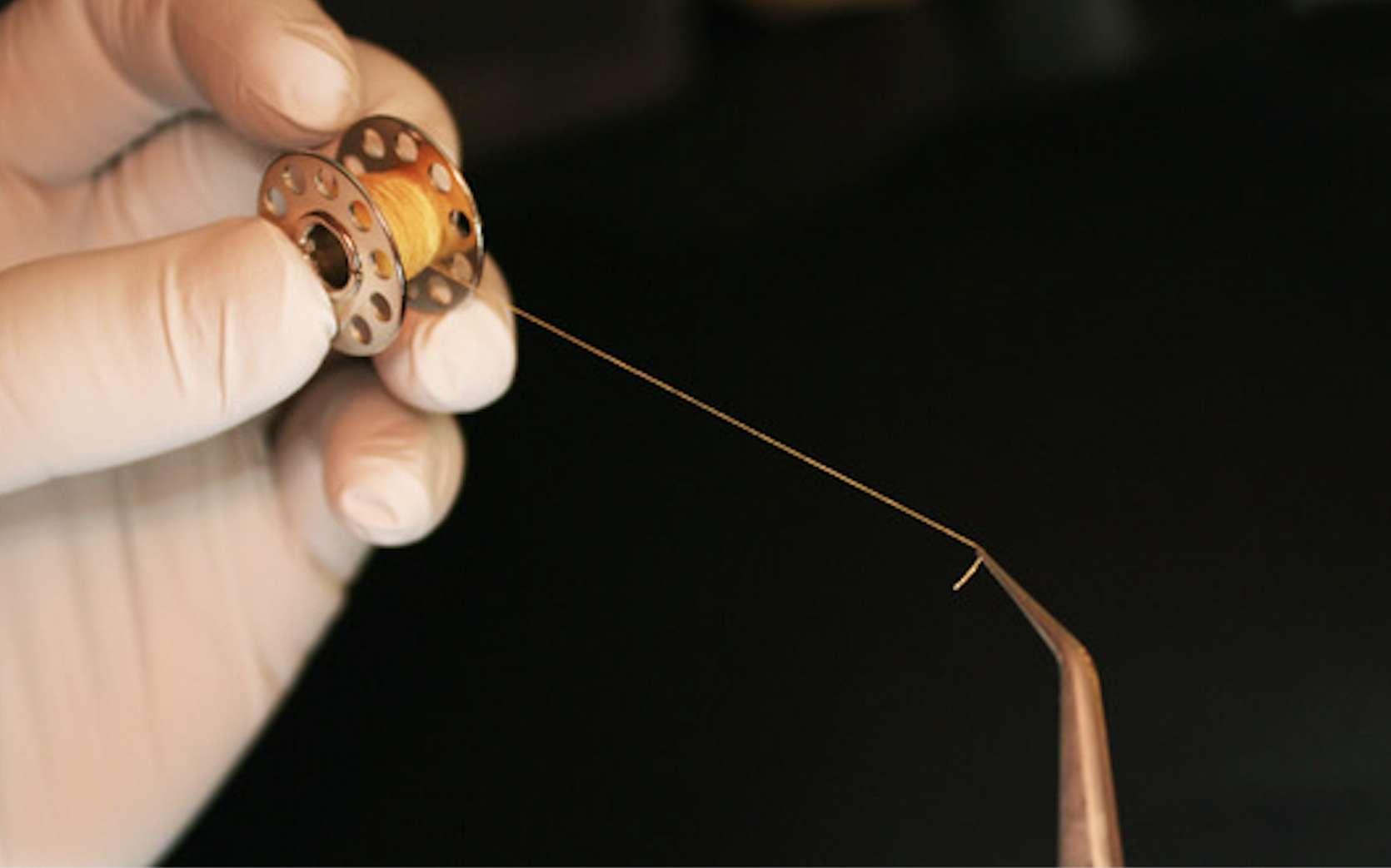 Les feuillets ont été découpés par les chercheurs pour former des fils, un peu comme ceux qui composent le textile d'un vêtement. © Nicolas L'Heureux