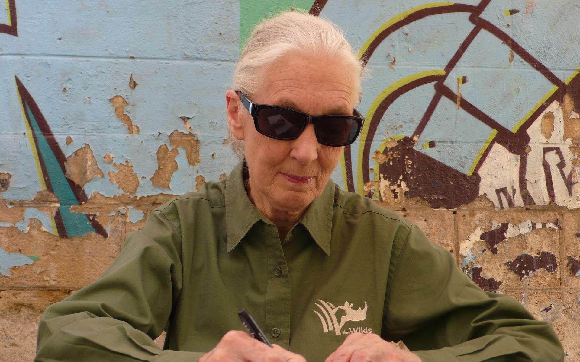 Jane Goodall a fêté en avril son 80e anniversaire. Après l'Espagne et la Belgique, elle est passée par la France pour diffuser son message d'espoir et ses appel à l'engagement. © Jean-Luc Goudet, Futura-Sciences