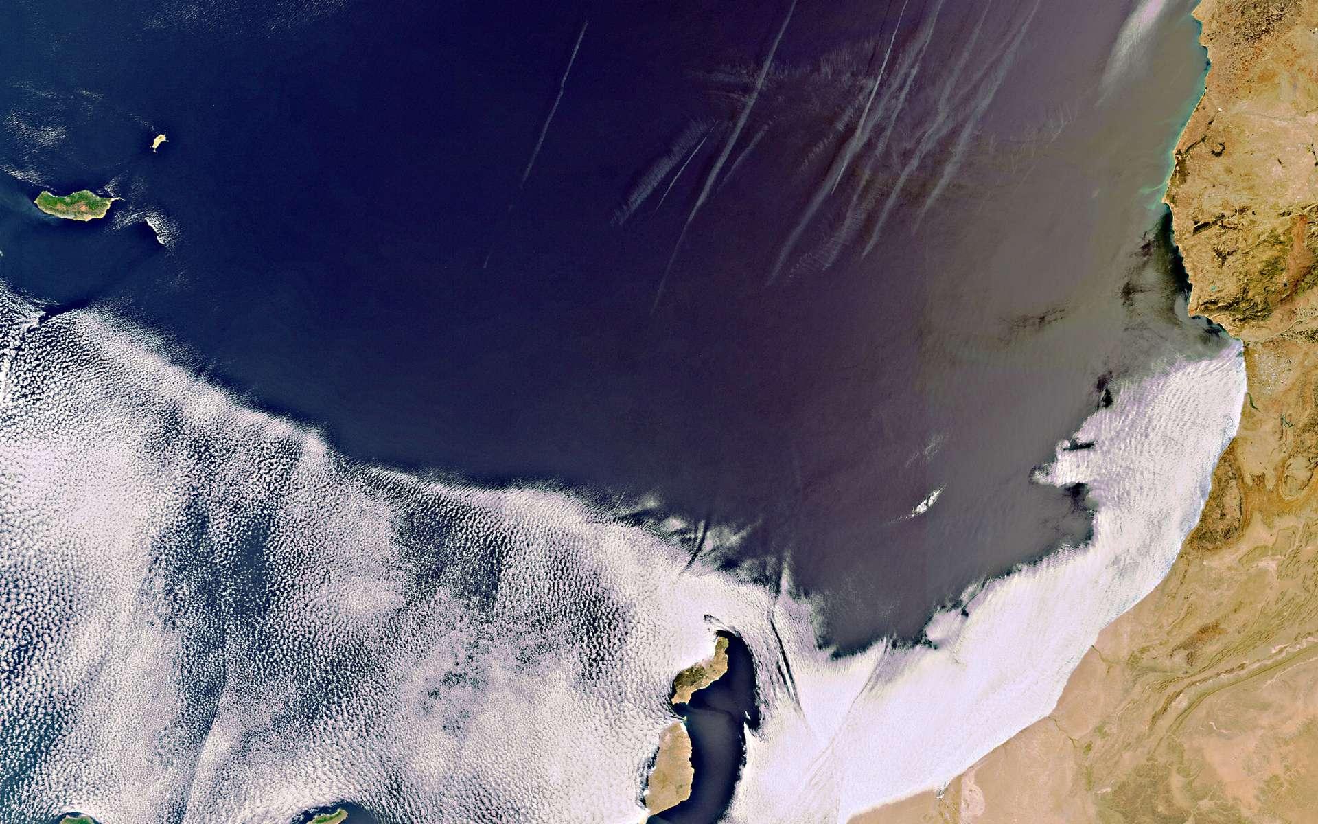 Cette image des îles Canaries a été prise le 8 septembre 2011 par la caméra Meris (Medium Resolution Imaging Spectrometer) du satellite Envisat. © Esa