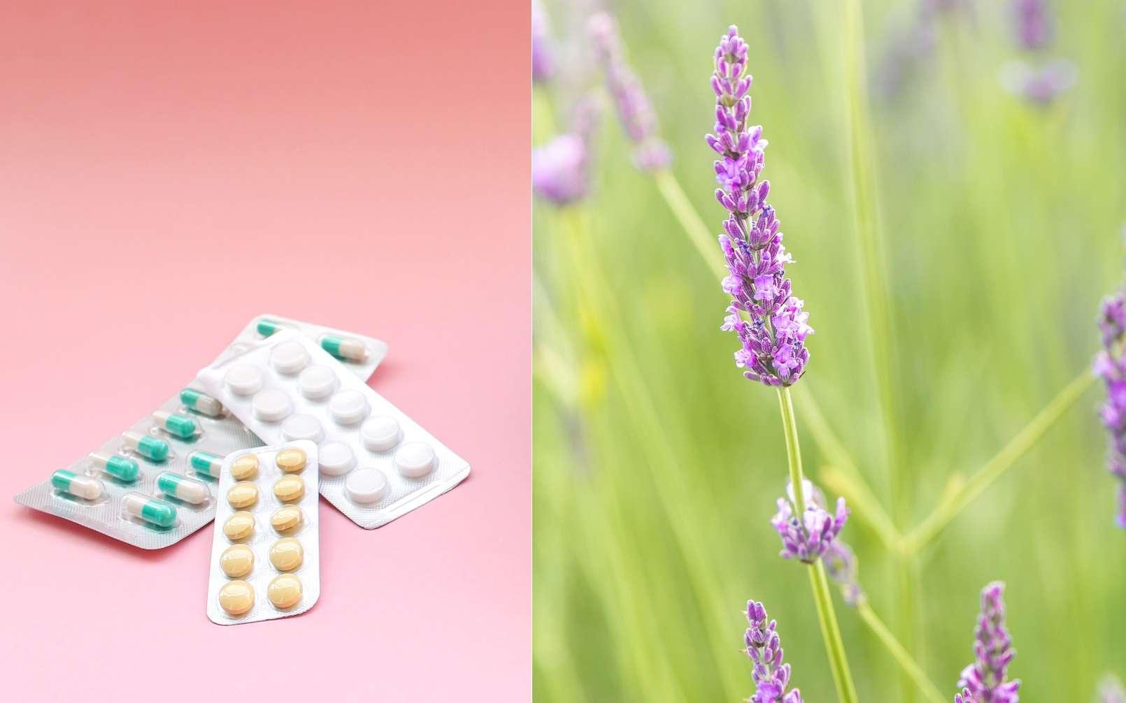 Nom de médicament ou nom de fleur ? À vous de deviner. © Gazed, jon_chica, Fotolia