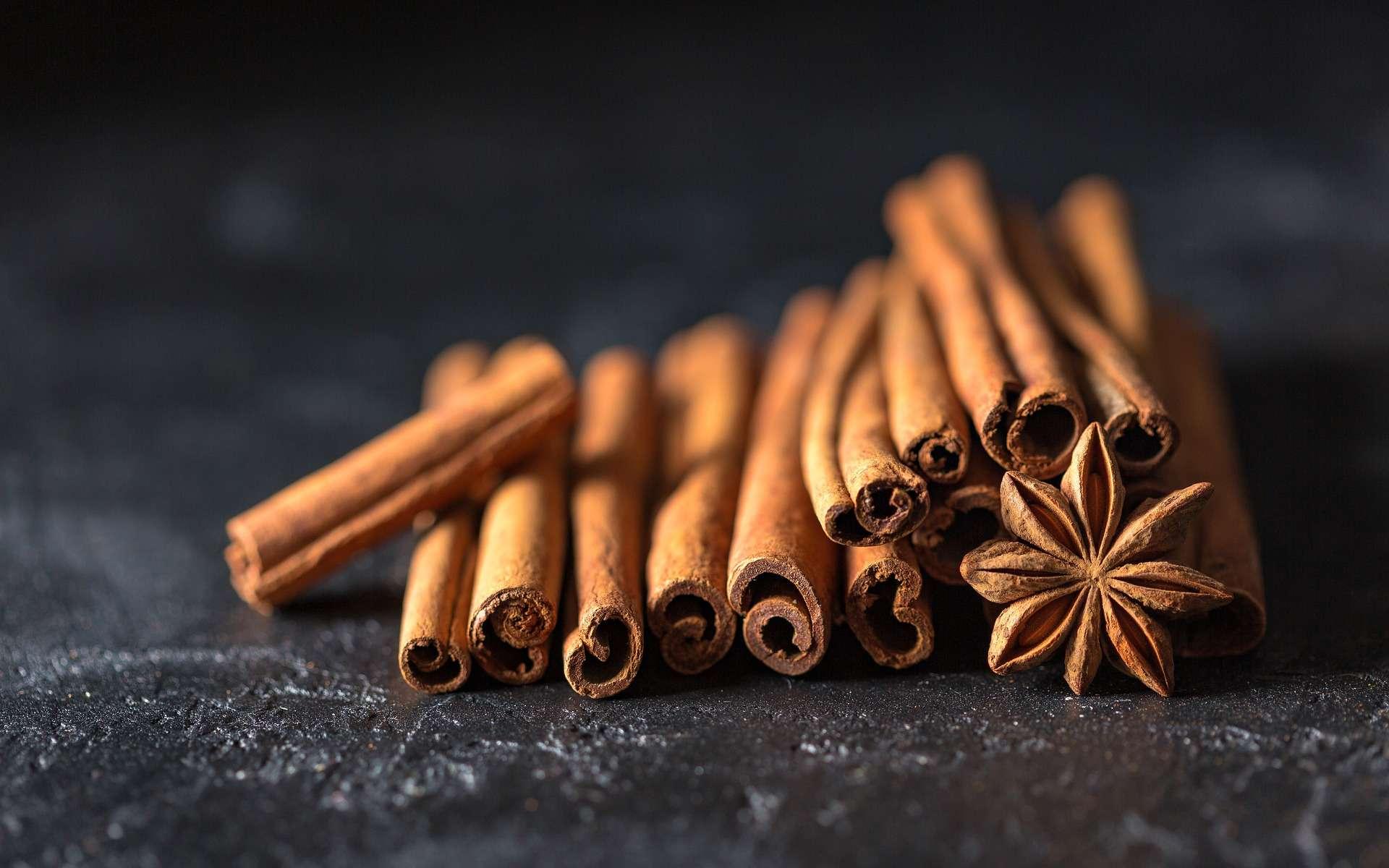 Selon une nouvelle étude, la cannelle pourrait aider à réduire le taux de glycémie chez les personnes prédiabétiques. © Daria Yakovleva, Pixabay