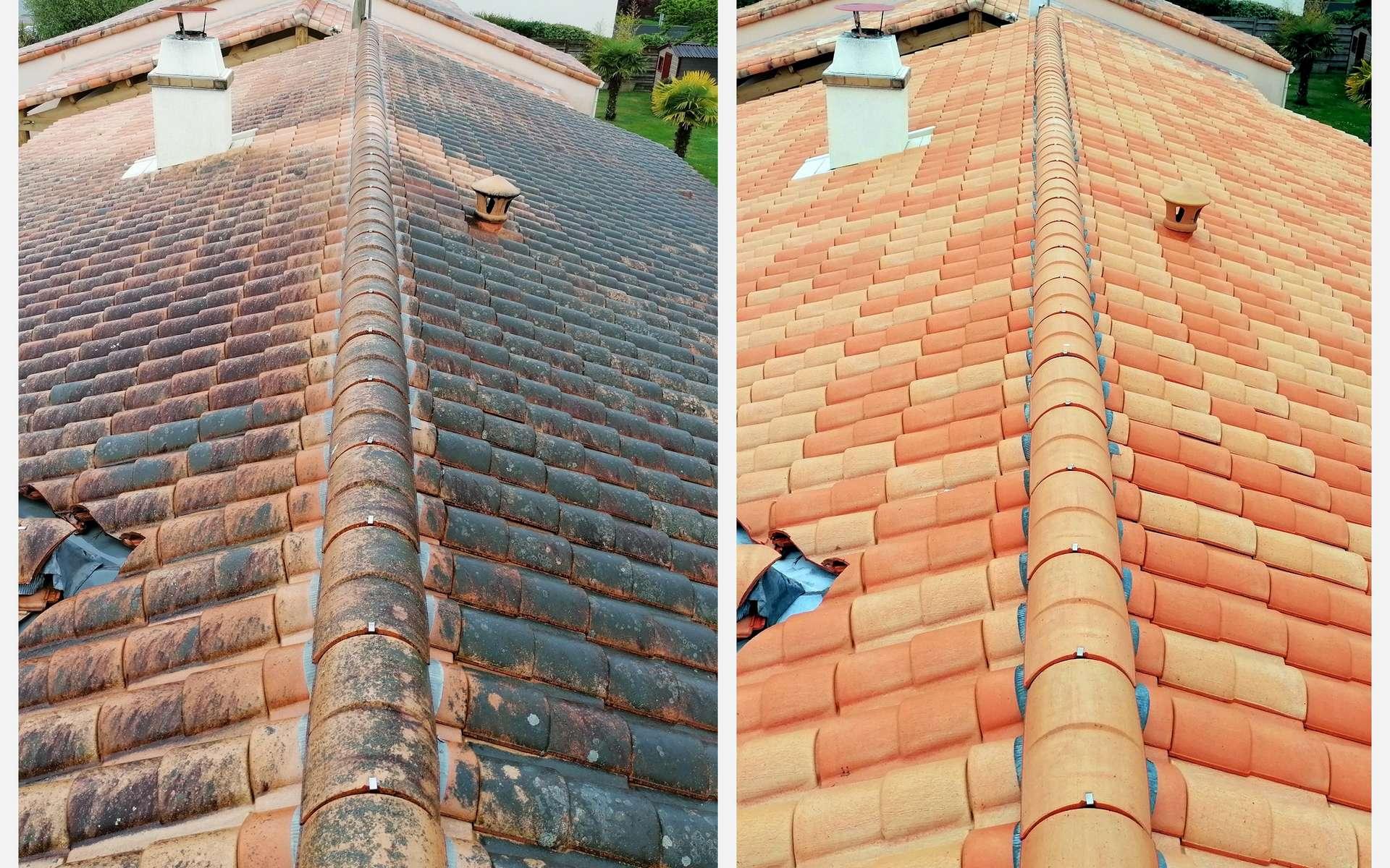 Nettoyage de toiture © Patryssia, AdobeStock