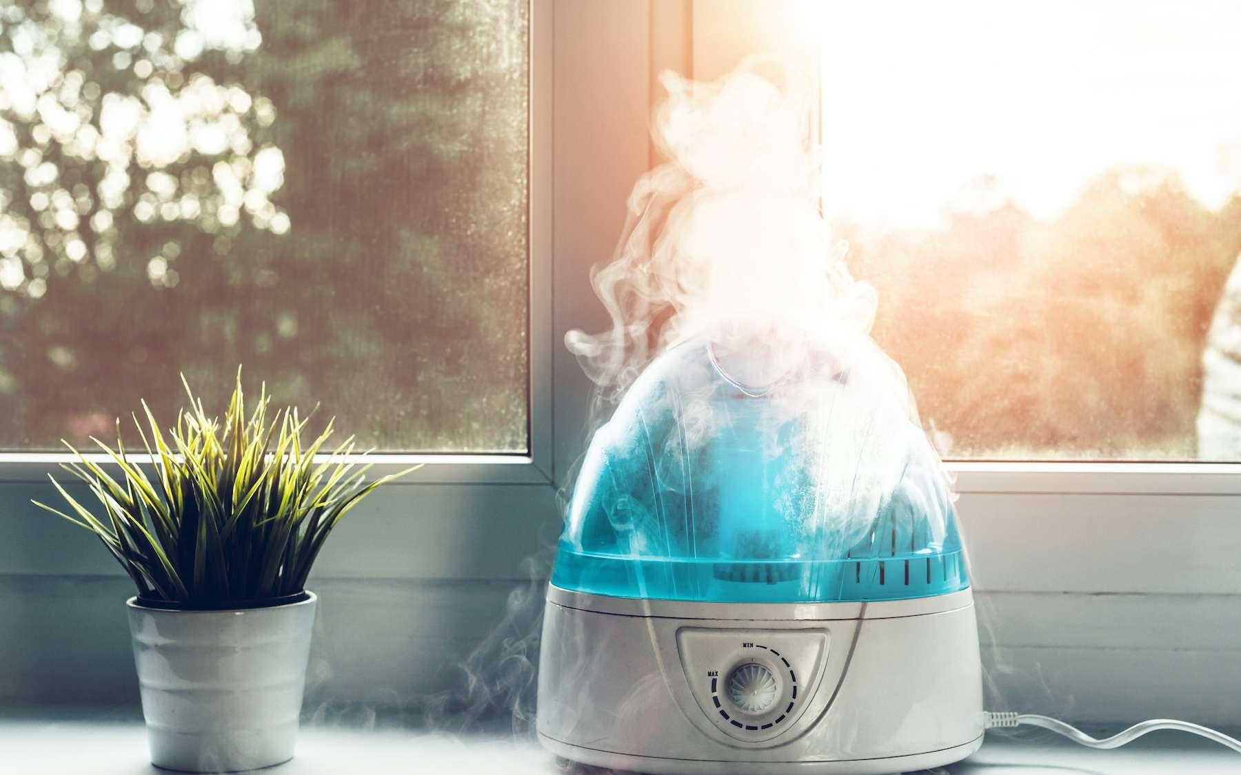 Maintenir un air intérieur suffisamment humide limite le risque d'infection par un virus. © Sebastian, Adobe Stock