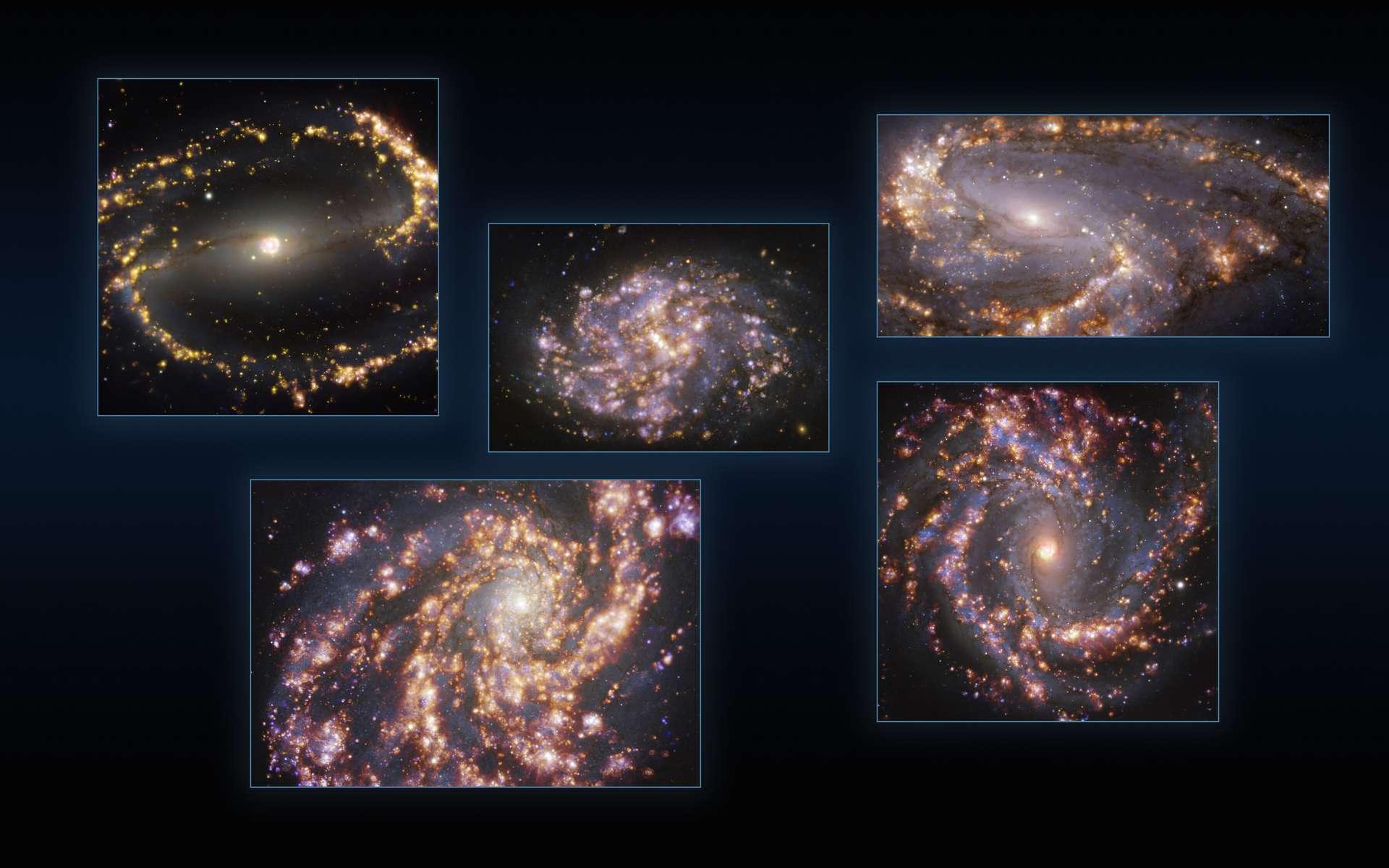 Cette image combine des observations des galaxies proches NGC 1300, NGC 1087, NGC 3627 (en haut, de gauche à droite), NGC 4254 et NGC 4303 (en bas, de gauche à droite) prises avec le Multi-Unit Spectroscopic Explorer (Muse) sur le Very Large Telescope (VLT) de l'ESO. Chaque image individuelle est une combinaison d'observations réalisées à différentes longueurs d'onde de lumière afin de cartographier les populations stellaires et le gaz chaud. Les lueurs dorées correspondent principalement à des nuages de gaz ionisés d'hydrogène, d'oxygène et de soufre, marquant la présence d'étoiles nouvellement nées, tandis que les régions bleutées en arrière-plan révèlent la distribution d'étoiles légèrement plus anciennes. Les images ont été prises dans le cadre du projet Phangs (Physics at High Angular resolution in Nearby GalaxieS), qui réalise des observations à haute résolution des galaxies proches avec des télescopes fonctionnant sur l'ensemble du spectre électromagnétique. © ESO, Phangs