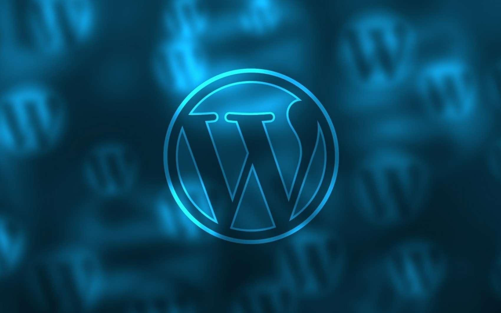 Wordpress propulse plus de 30 % de l'Internet mondial ! © Pixabay