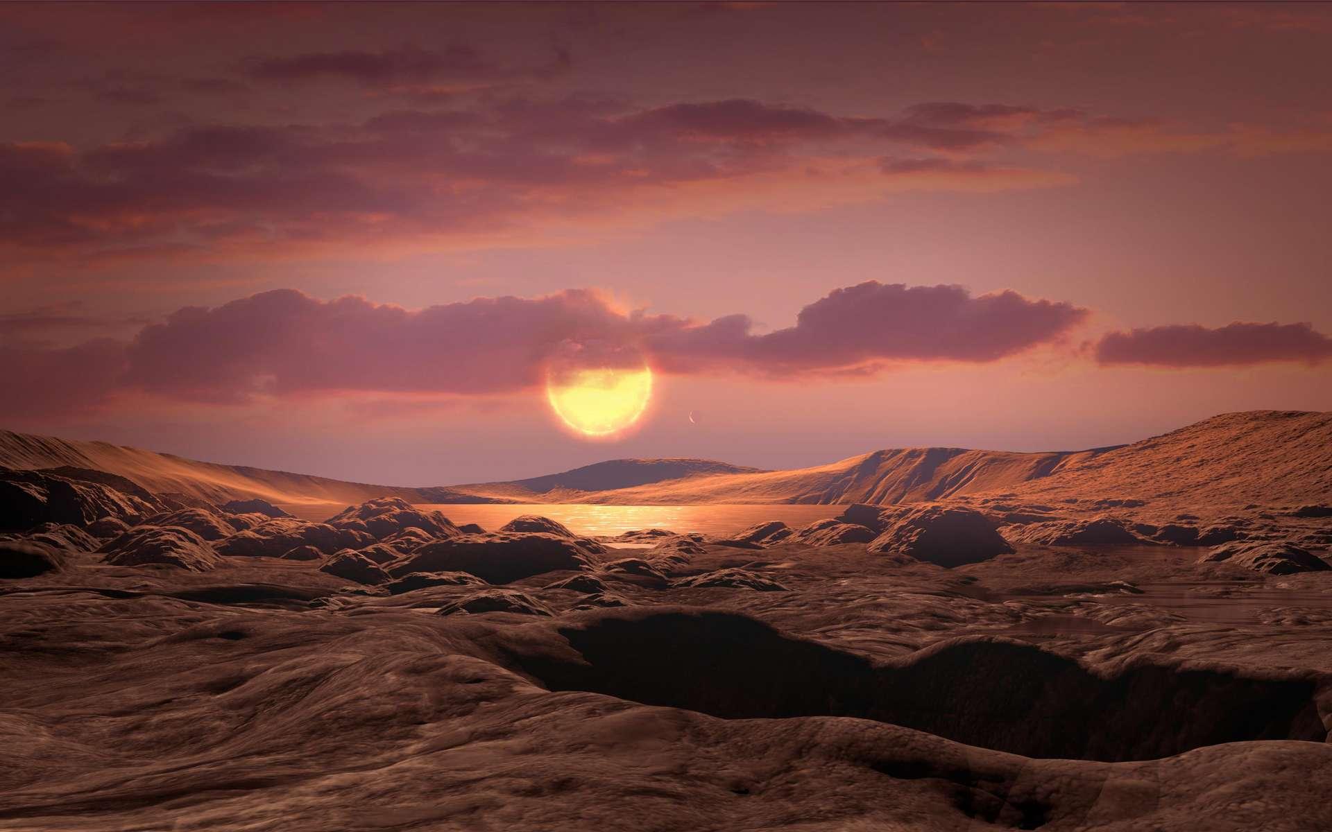 Illustration de la surface de l'exoplanète Kepler-1649c, en orbite dans la zone habitable de son étoile naine rouge, à l'instar de Proxima Centauri b. © Nasa, Ames Research Center, Daniel Rutter