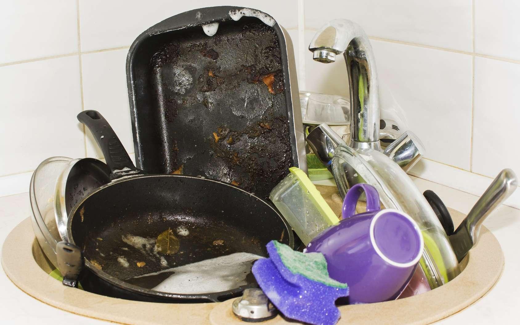 La cuisine regorge de nids à microbes : évier, éponges, réfrigérateur… © mihail39, Fotolia
