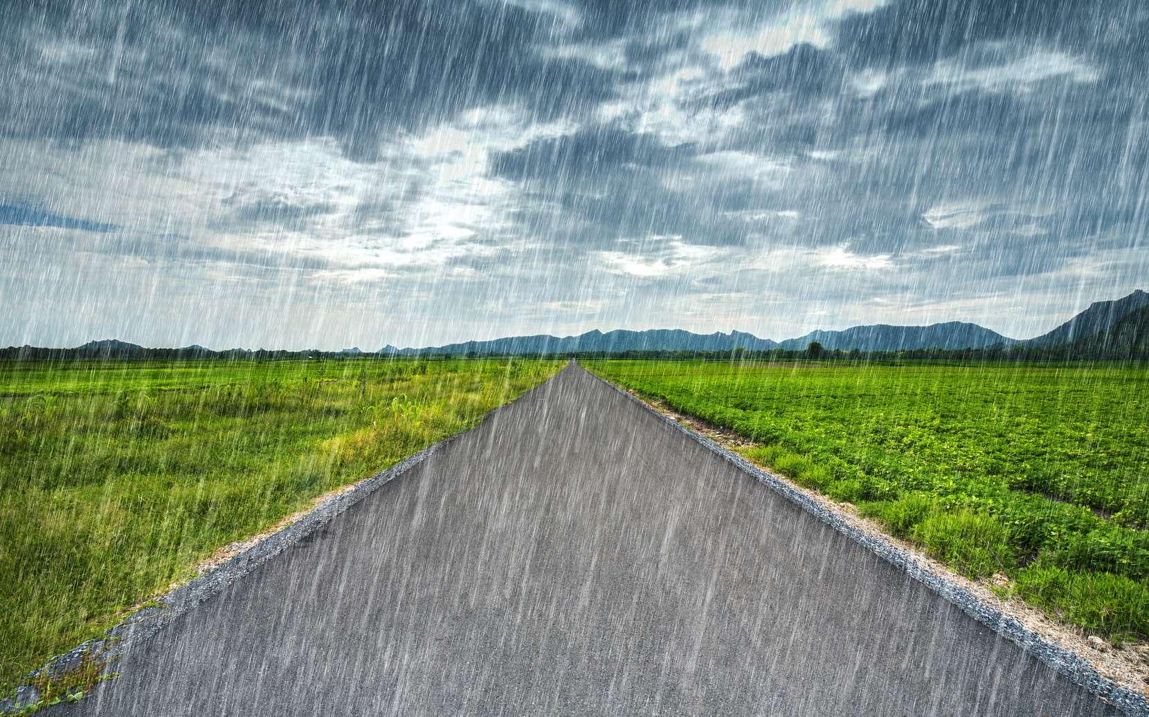 Quelles sont les causes des pluies acides ? © geargodz, Fotolia