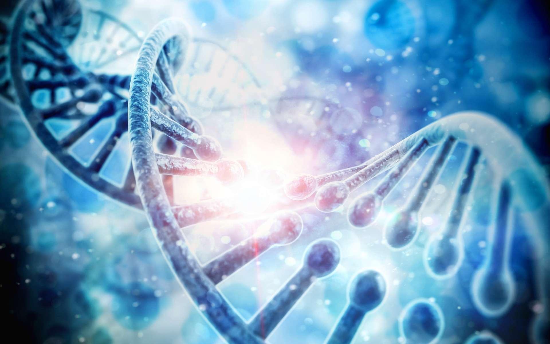 Les coûts et la rapidité du séquençage de l'ADN continuant à baisser, des mémoires à très haute densité capables de durer des centaines d'années pourraient servir à stocker de fantastiques quantités d'informations à destination des générations futures. © Digital Genetics, Shutterstock