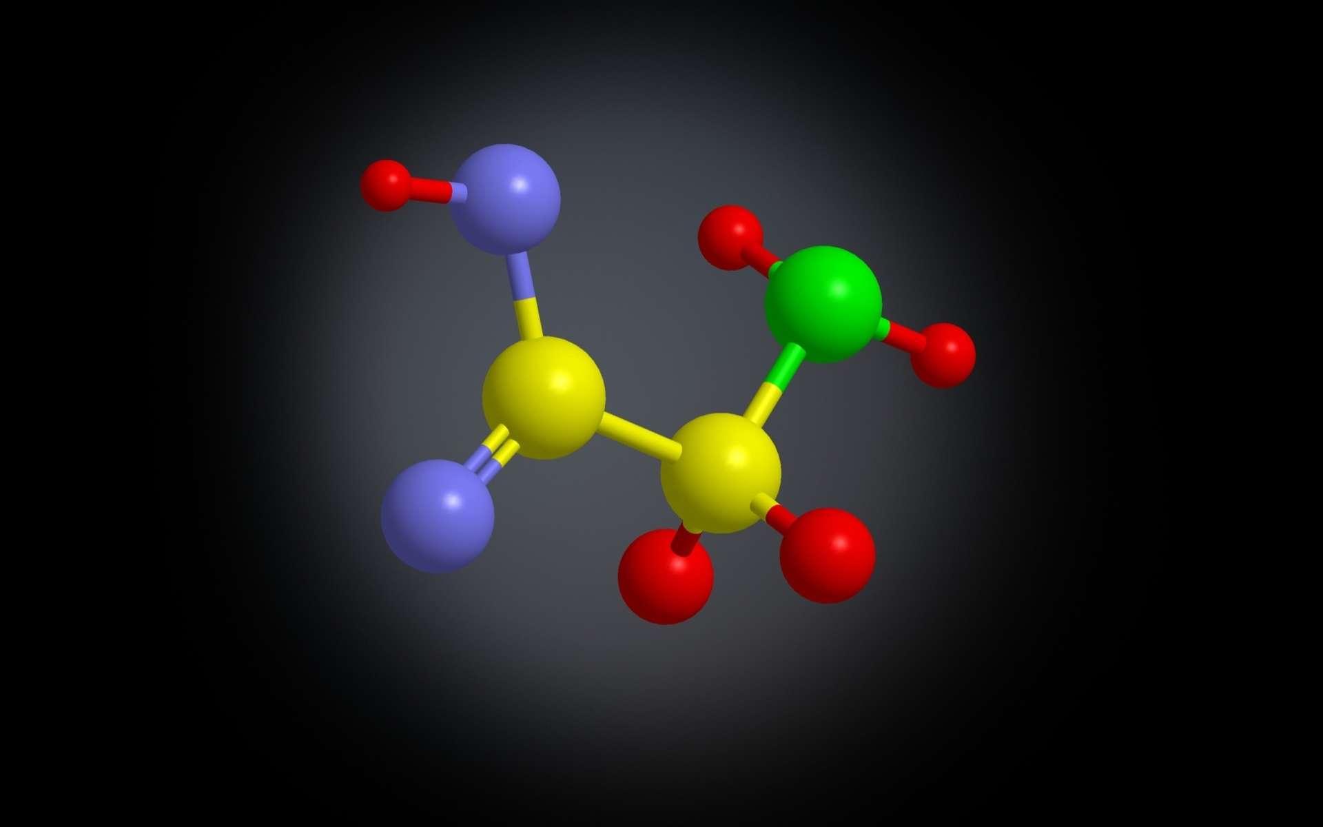 La glycine est un acide aminé non essentiel et un neurotransmetteur. © Raimund14, Adobe Stock
