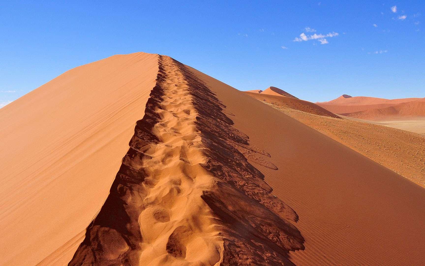 Le Sossusvlei est un désert de sel et d'argile situé dans le Parc national de Namib-Naukluft, dans le désert de Namib, en Namibie. Là se dressent de majestueuses dunes qui culminent à plus de 375 mètres de haut, leur permettant de figurer au palmarès des plus hautes dunes du monde.Leur couleur rouge qui contraste si joliment avec le bleu du ciel local, elles la doivent à la présence dans leur sable de trioxyde de fer (Fe2O3). Du sable de grès érodés accumulé sur le site par des vents qui l'ont porté parfois sur des distances incroyables. Une partie viendrait même du désert du Kalahari.© Sue Kellerman, Flickr, CC by-NC 2.0