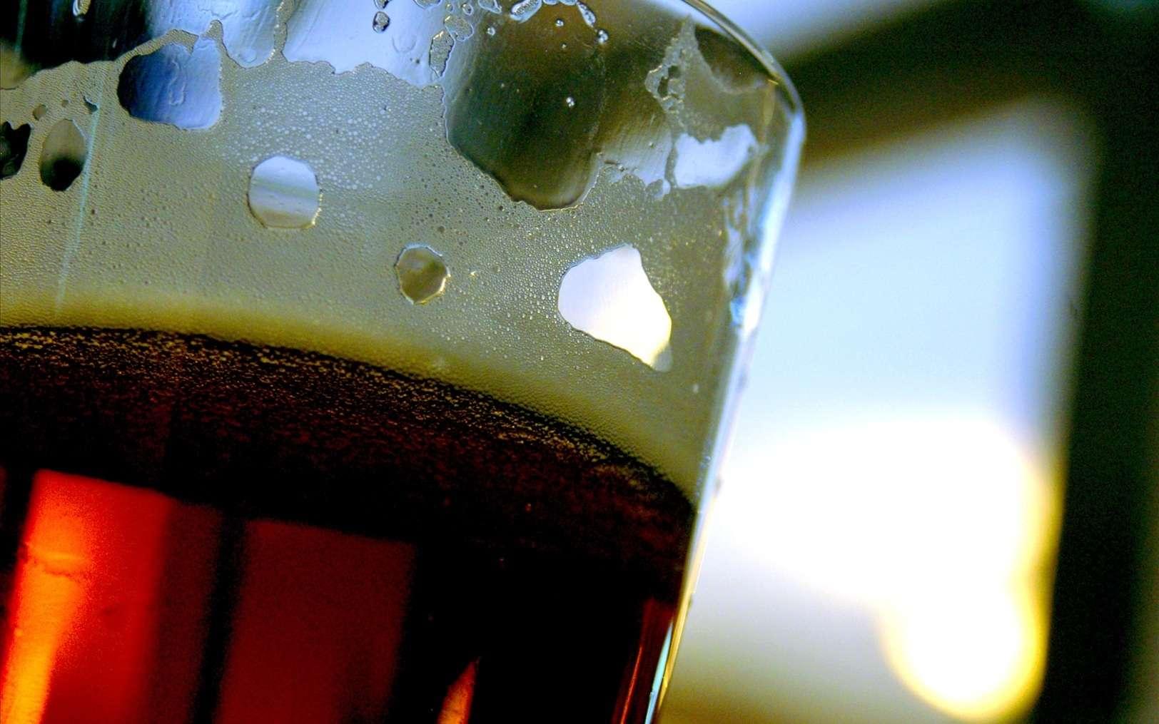 La bière est une boisson ancestrale que l'on retrouve aux quatre coins du monde. Comme le vin rouge qui prolongerait l'espérance de vie, peut-elle nous aider à combattre des maladies, comme le diabète ou le cancer ? © mjafardo, Fotopédia, cc by nc nd 2.0