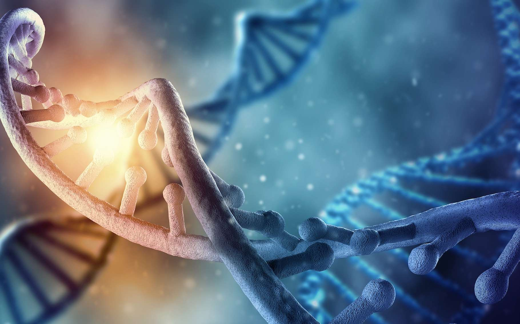 Des chercheurs ont pu observer et comprendre comment fonctionne les « nano-machines » qui détectent et réparent les cassures double brin de l'ADN. © Sergey Nivens, shutterstock.com
