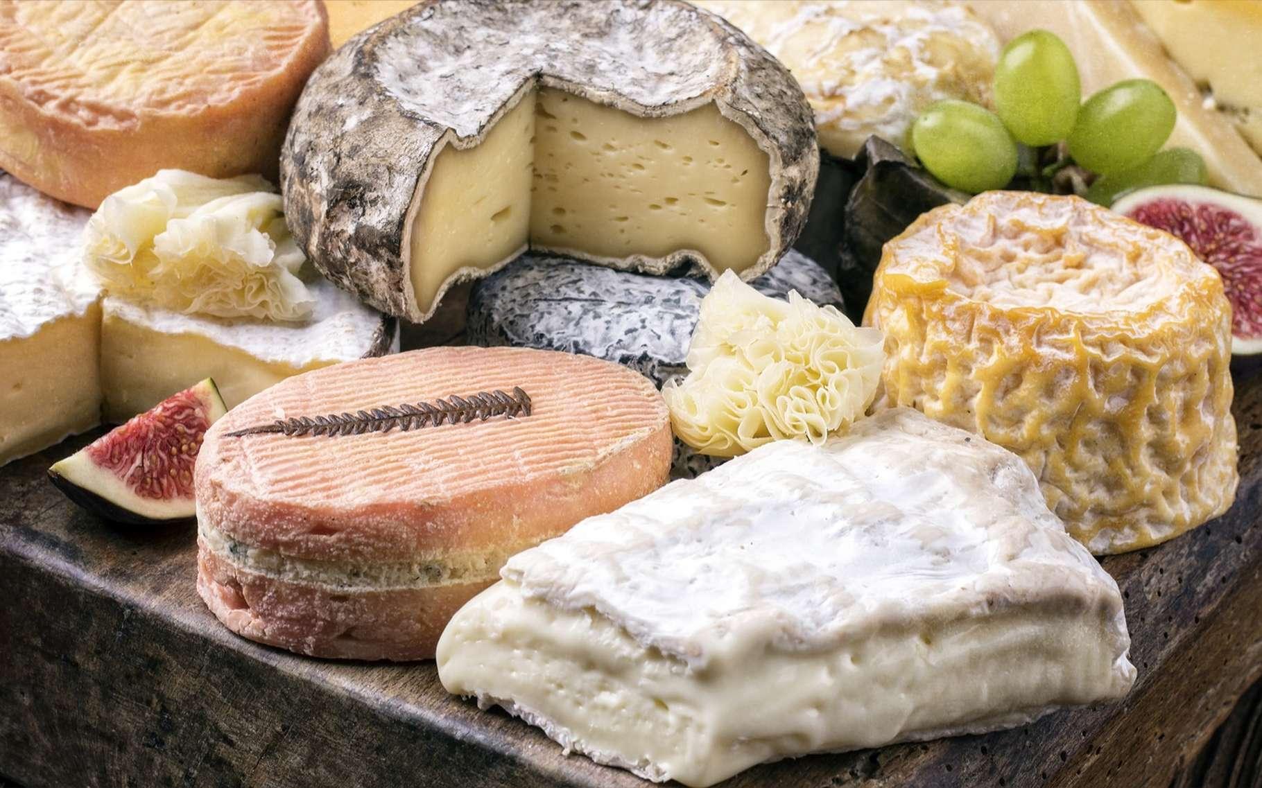 Fromage ou dessert ? Pour certains, le fromage inspire du dégoût. © hlphoto, Shutterstock