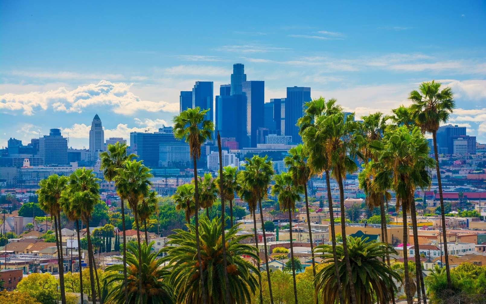 Aux Etats-Unis, la ville de Los Angeles compte planter 90.000 arbres dans toute la ville d'ici 2021. © Photographie Davel5957 / IStock.com