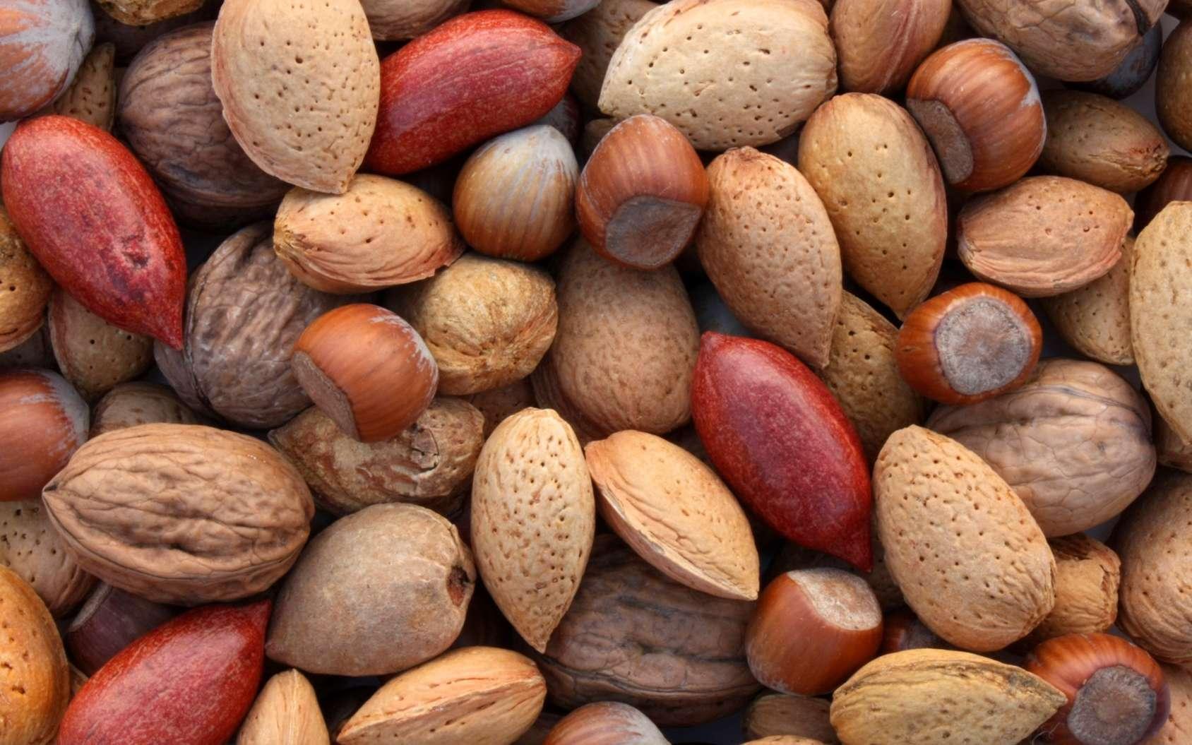 Les oléagineux sont des fruits et des graines riches en huile. © Brad Pict, Fotolia