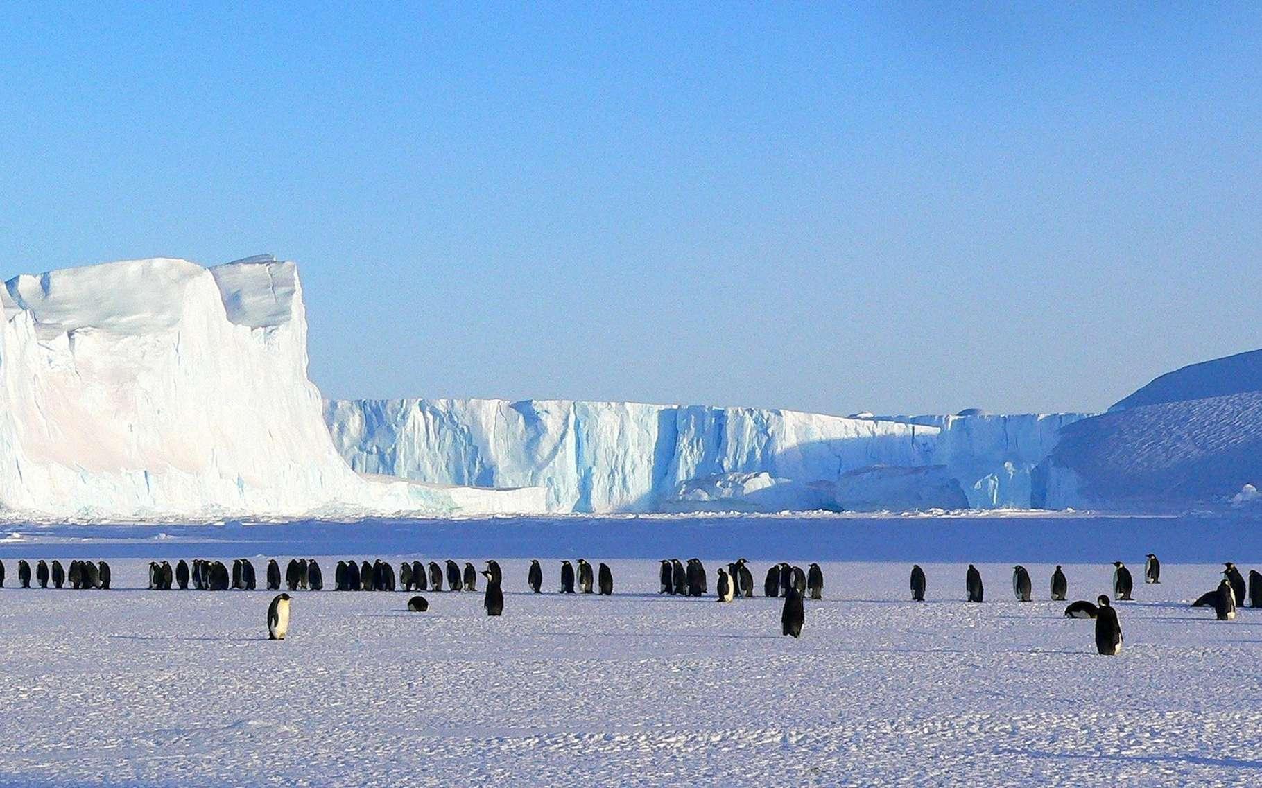 L'Antarctique méritera-t-il encore longtemps son surnom de continent blanc? © MemoryCatcher, Pixabay, CC0 Public Domain