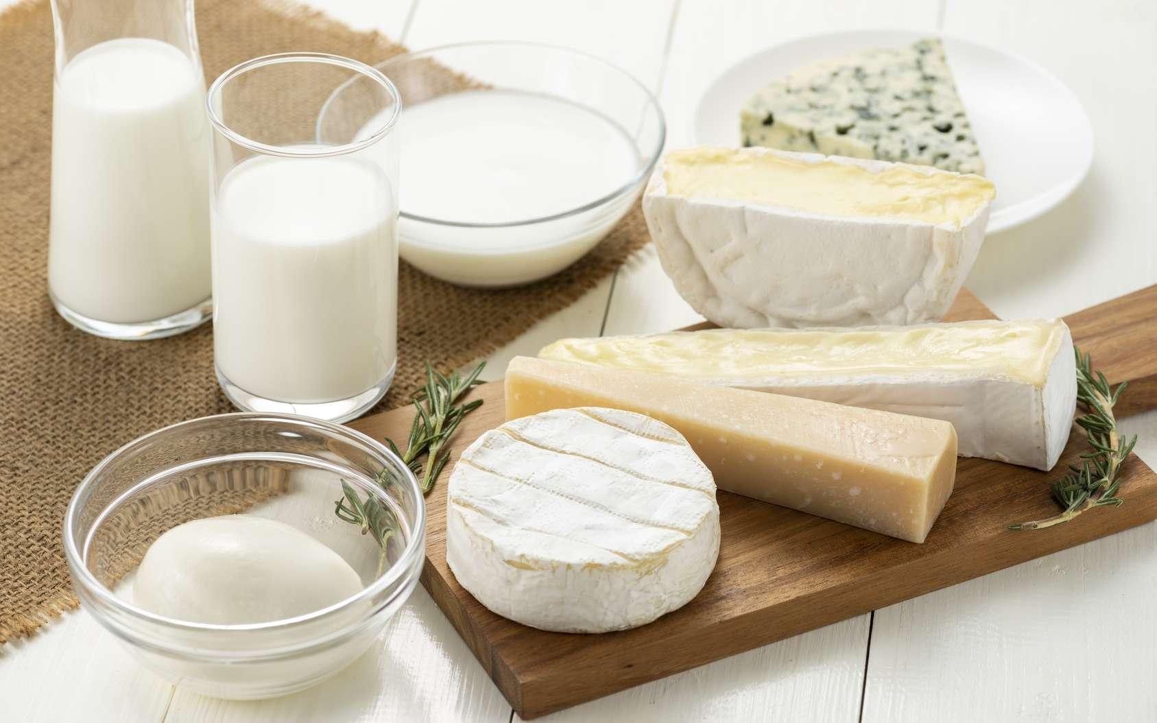 Les produits laitiers contiennent des lipides polaires qui seraient bénéfiques pour la santé cardiovasculaire de personnes à risque. © kai, Fotolia