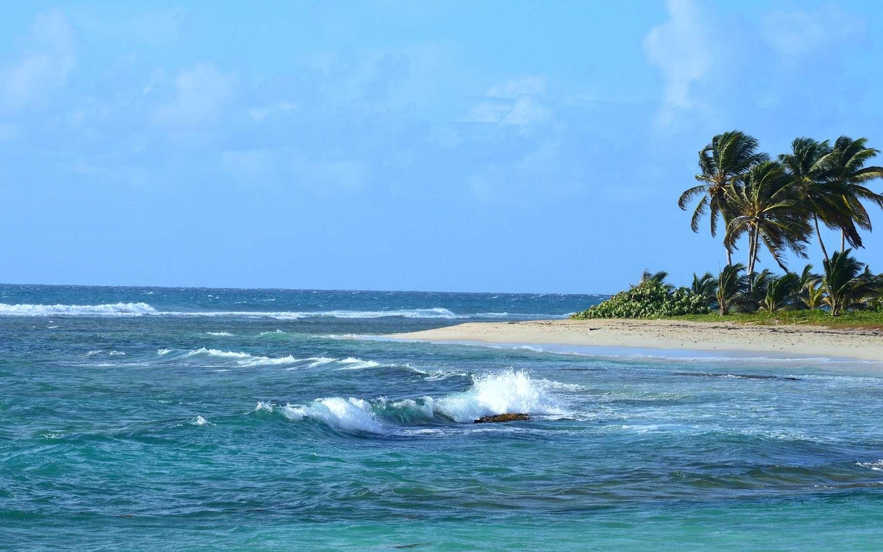Les alizés sont des vents qui soufflent tout au long de l'année entre les tropiques. © Lecreusois, Pixabay, CC0 Creative Commons
