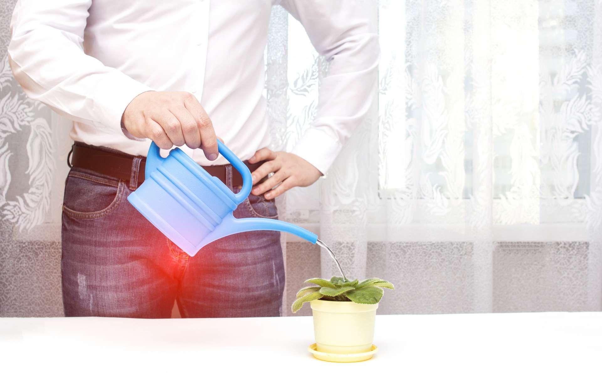 Troubles urinaires chez l'homme : quand la douleur rime avec difficultés mictionnelles. © Adobe Stock, Henadzy