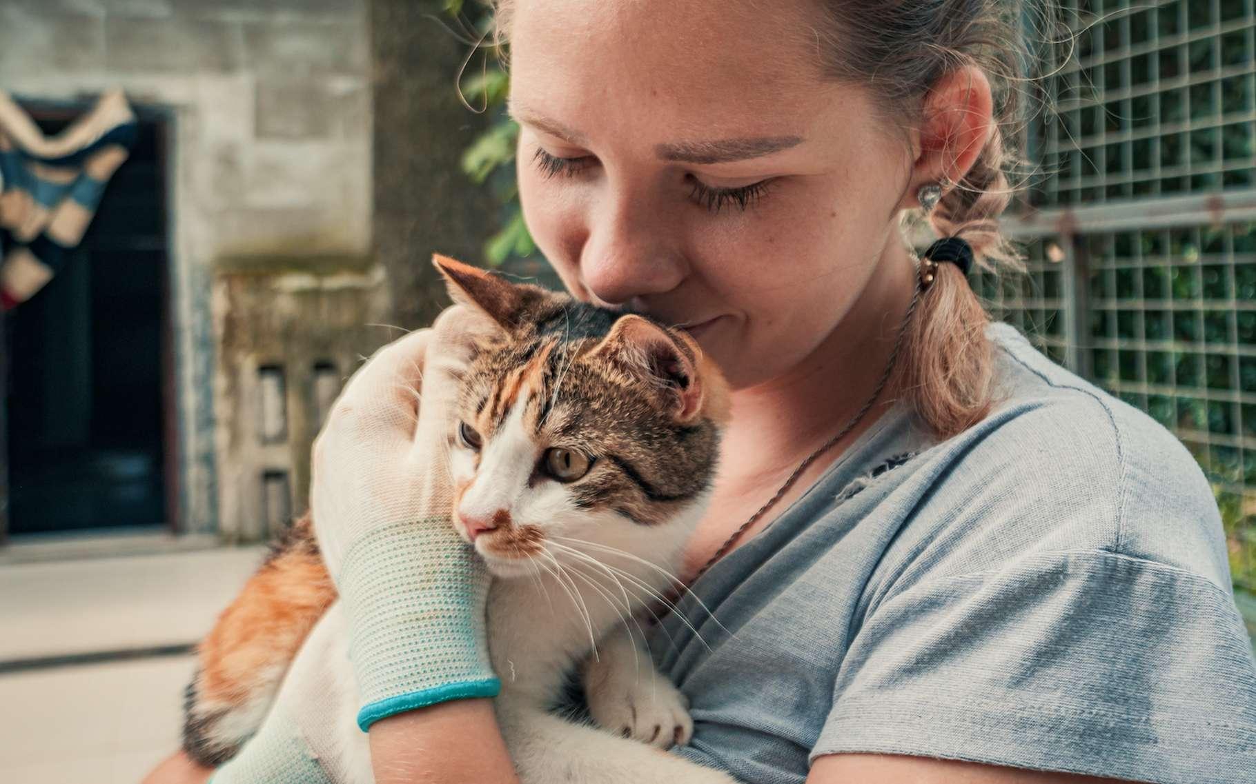 Il existe de nombreuses façons de défendre la cause animale au quotidien. © Евгений Бахчев, Adobe Stock