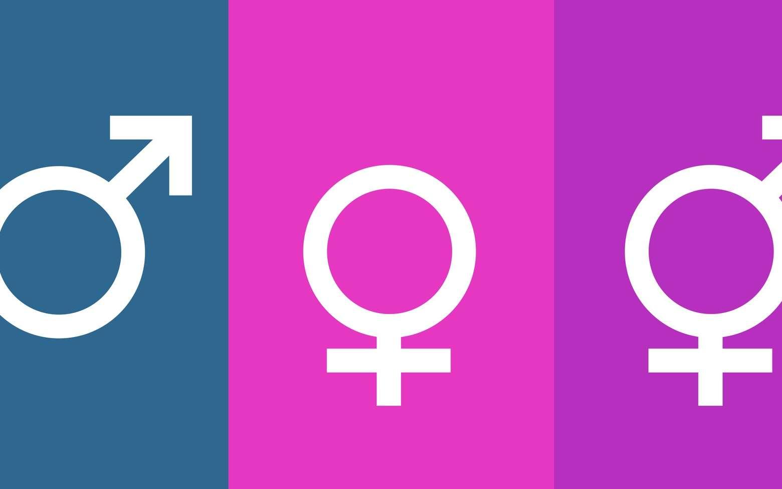Les chromosomes sexuels déterminent le sexe de l'individu. © Stockwerk-Fotodesign, Fotolia