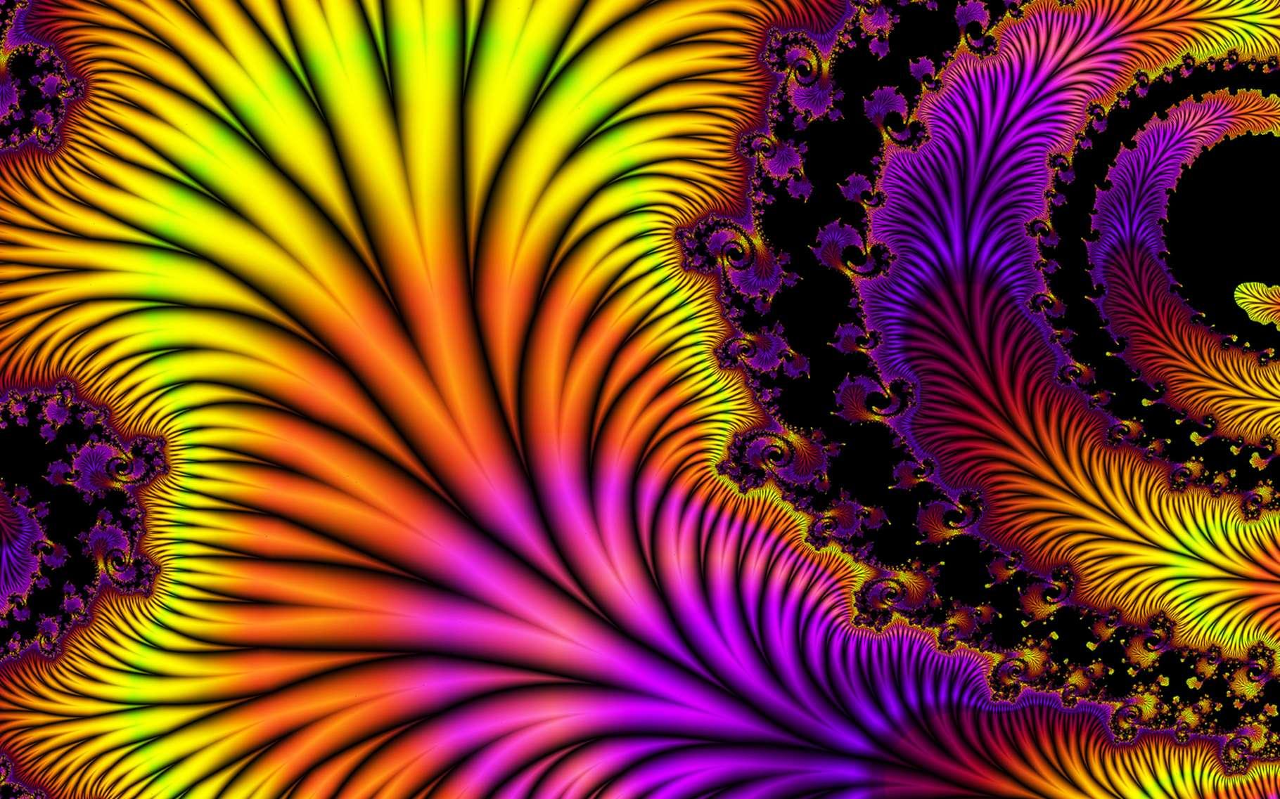 Curiosité mathématique, les fractales se découvrent par l'image, avec les formes fascinantes qu'elles dessinent. Elles sont aussi une ouverture vers d'autres disciplines, car le monde abonde de fractales naturelles... © DR