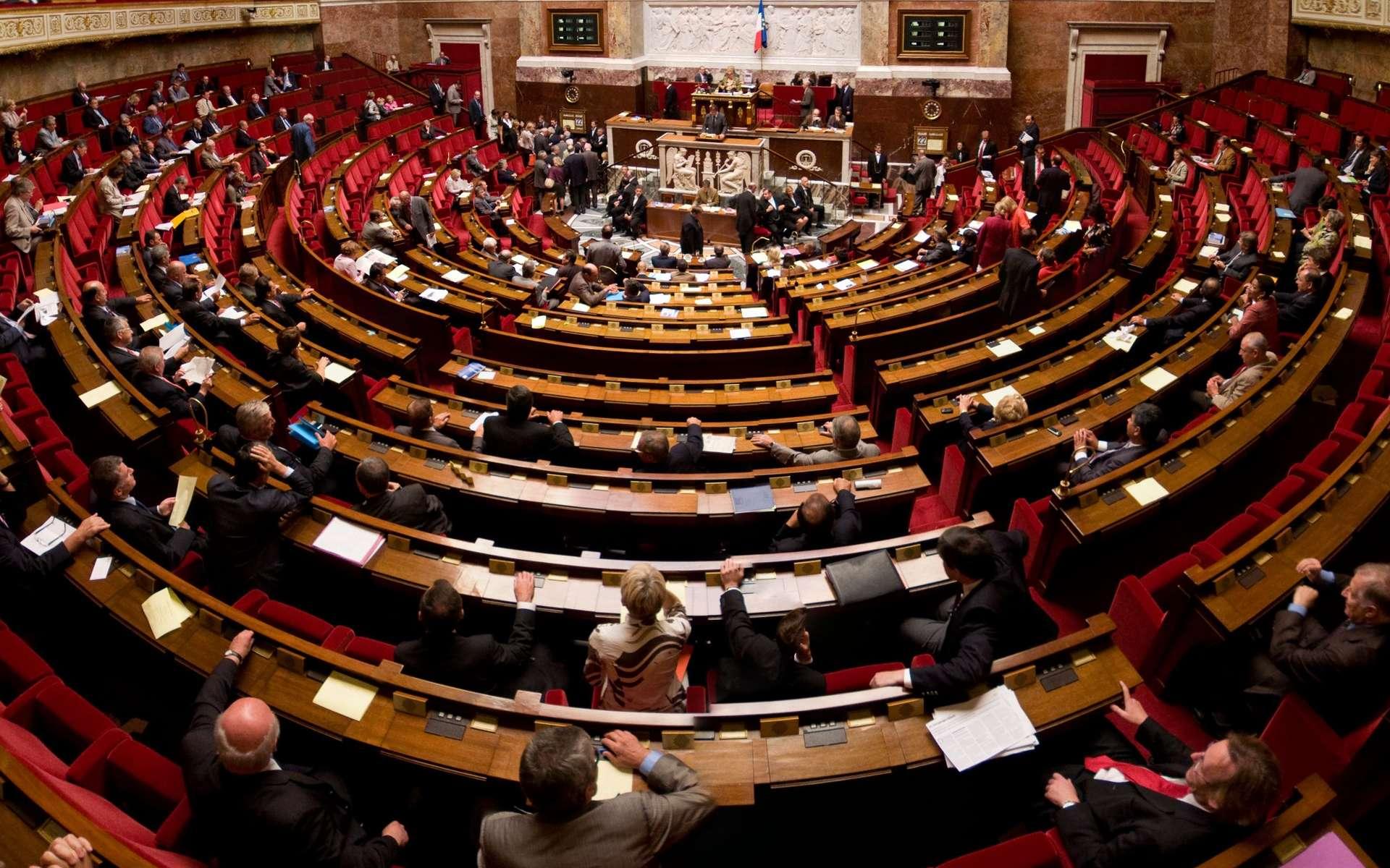 Hémicycle de l'Assemblée nationale. © Richard Ying et Tangui Morlier, Wikimedias Commons, CC by-sa 3.0