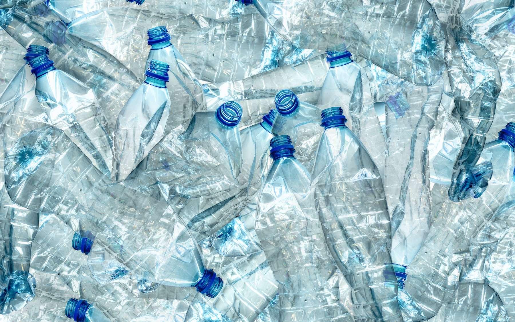 Cette nouvelle super enzyme dégrade le plastique six fois plus vite. © Roman Milert, Adobe Stock