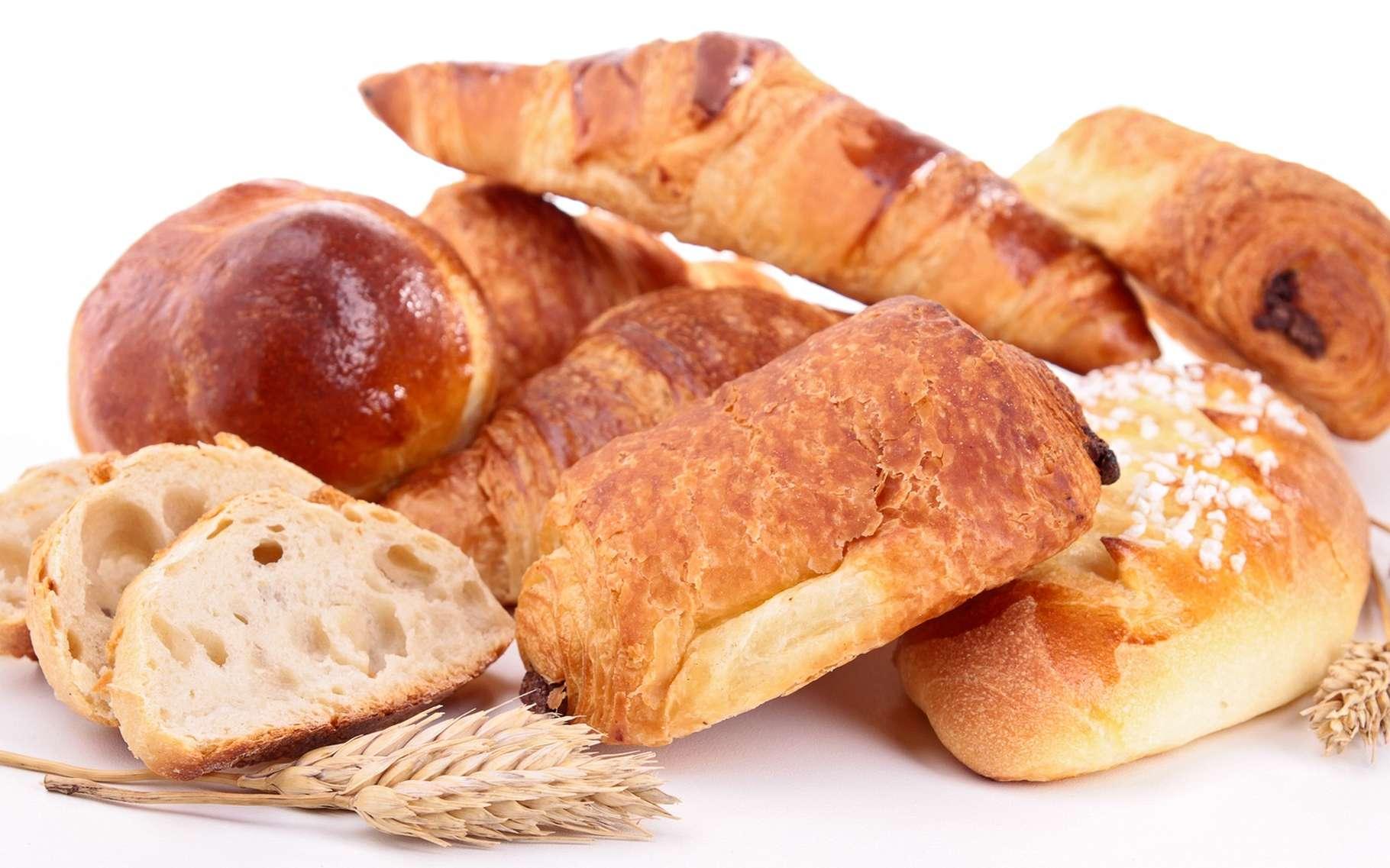 Du pain français au riz asiatique, tous ont un goût « amidonné » universel. © margouillat photo, Shutterstock