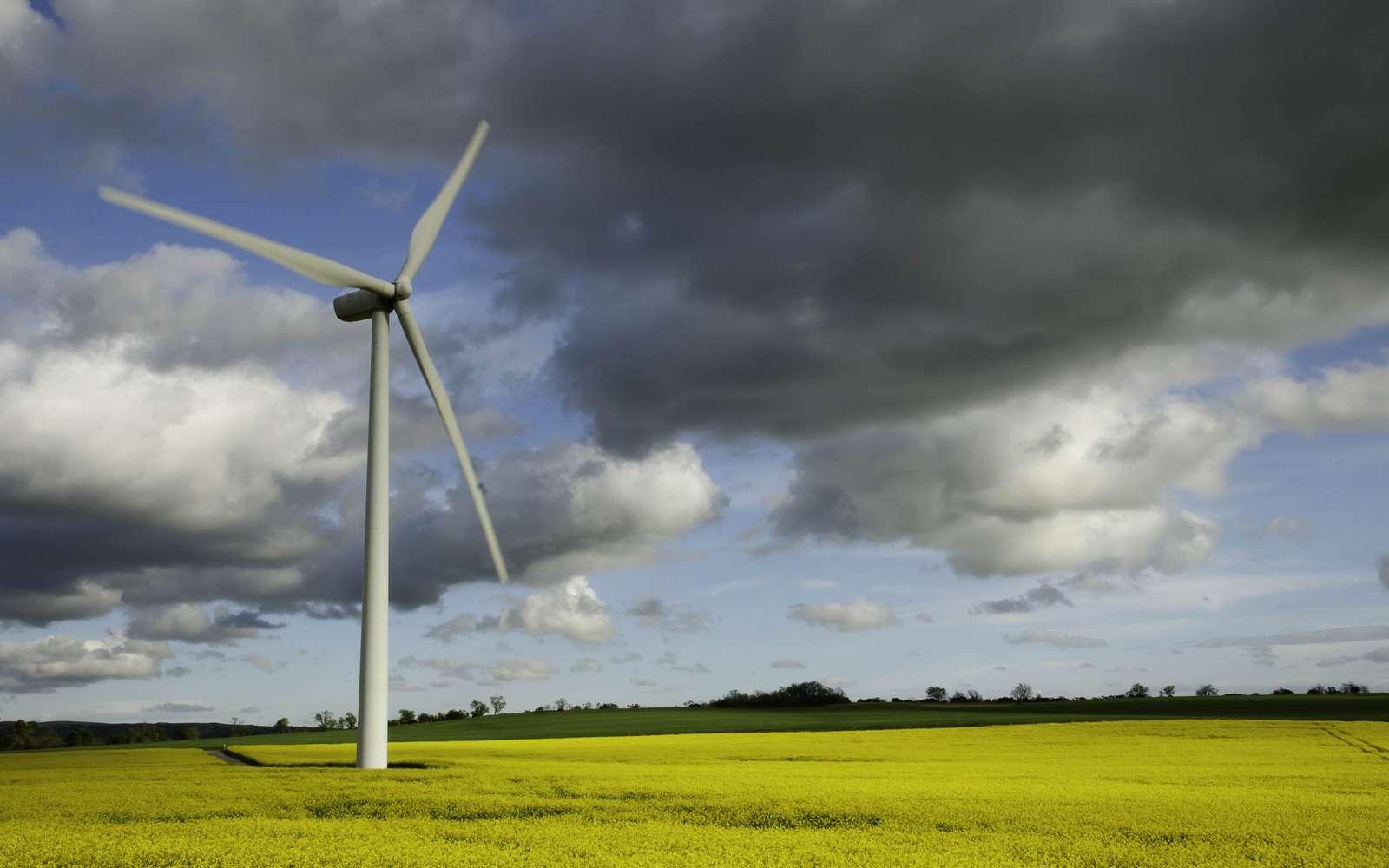 Une éolienne dans un champ. La part de l'énergie éolienne dans le mix énergétique est amenée à se développer dans les prochaines décennies. © Marc Lagneau, cc by nc 2.0