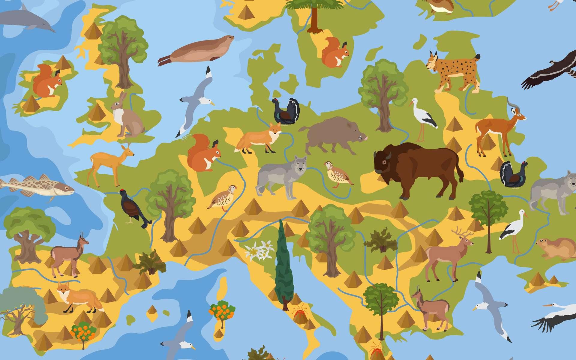 Ces 66 espèces exotiques présentent un grave risque pour la faune et la flore européenne. © a7880ss, Fotolia