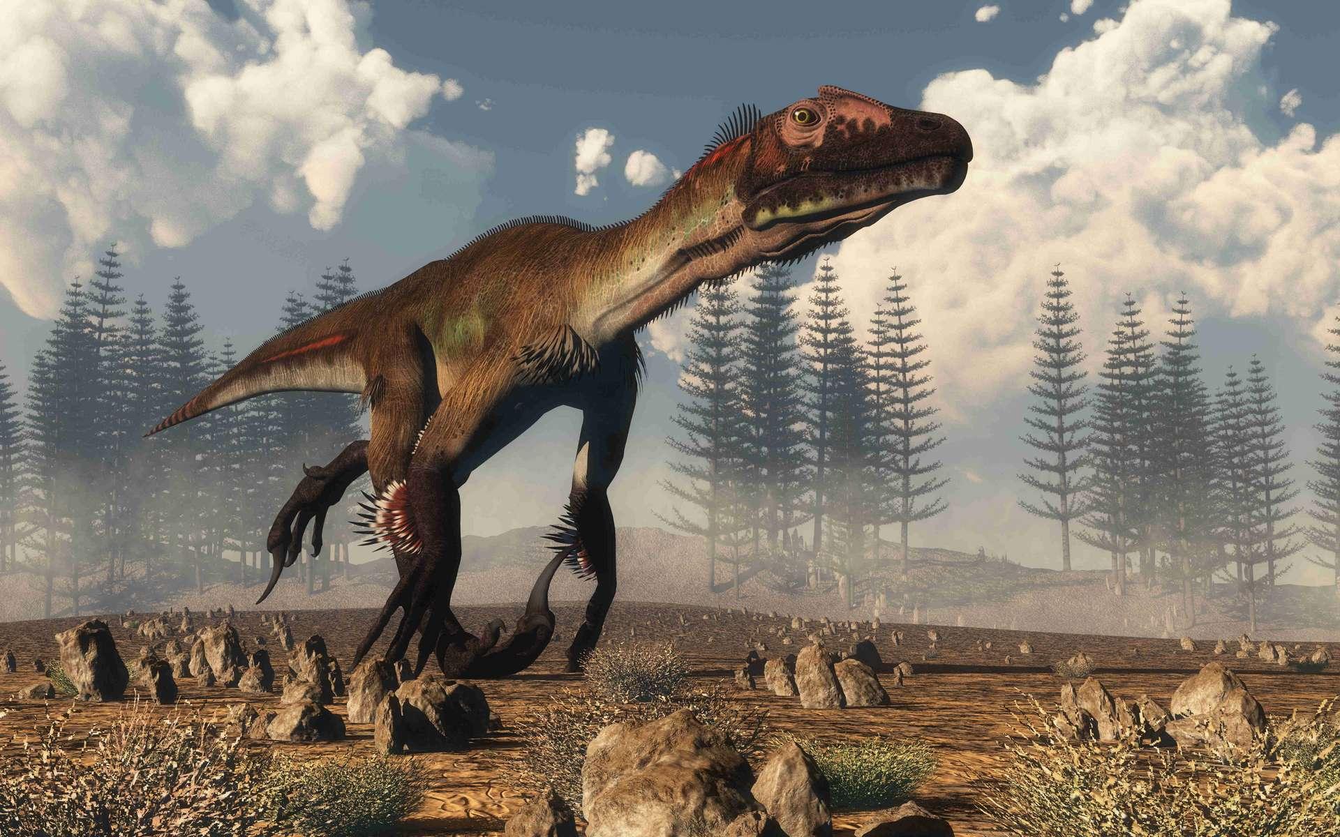 Vue d'artiste d'un Utahraptor appartenant aux Dromaeosauridae et phylogénétiquement proche des oiseaux actuels. © Elenarts, Adobe Stock