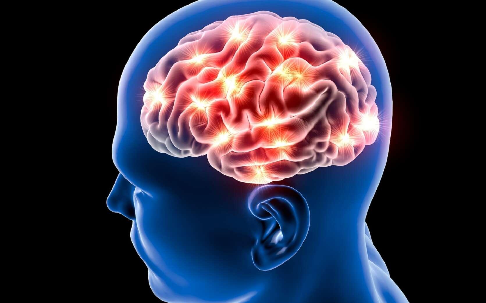 Il existerait des traces « préconscientes » des décisions dans le cerveau. © Naeblys, Shutterstock