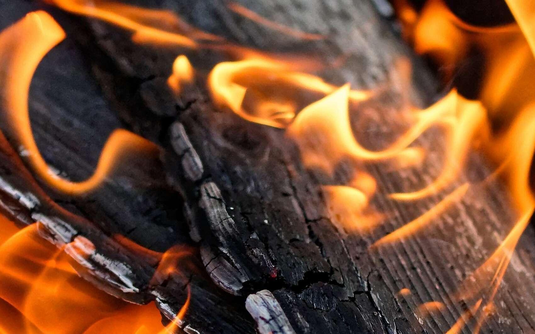 Les cendres de bois constituent un allié naturel au jardinier. © Alexas_fotos, Pixabay