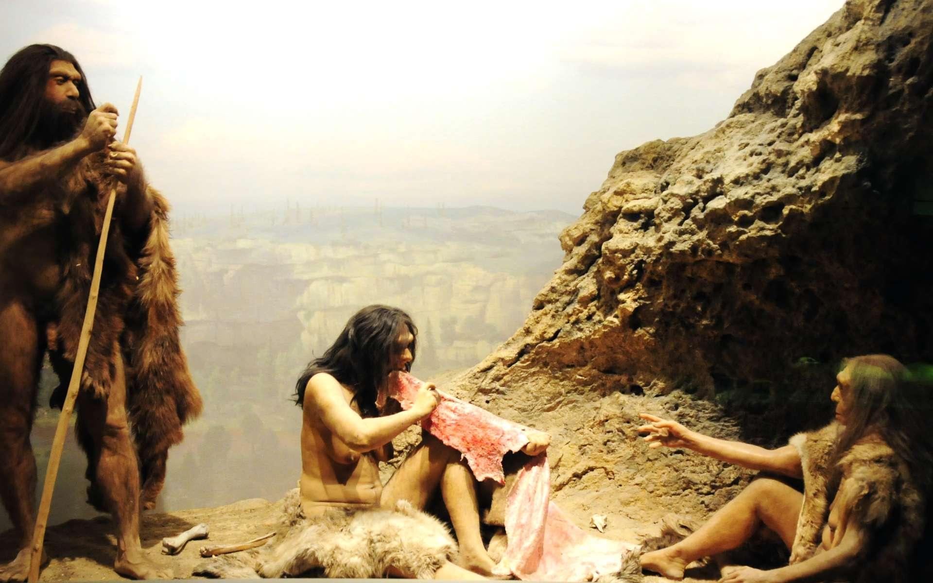 L'Homme de Denisova, mystérieuse espèce éteinte identifiée en 2010, est un groupe frère de l'Homme de Néandertal. © Vince Smith, Flickr, licence CC