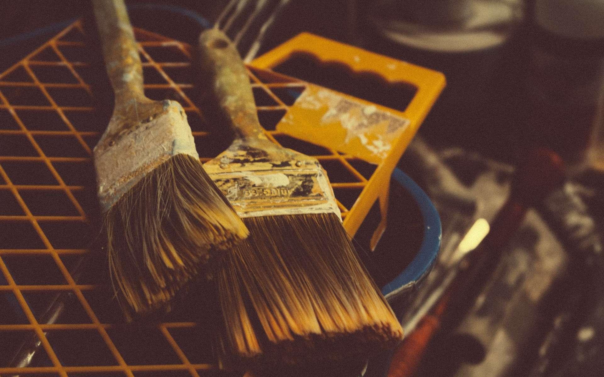 Comment peindre sur du bois contreplaqué ? © Tookapic, Pexels, CCO