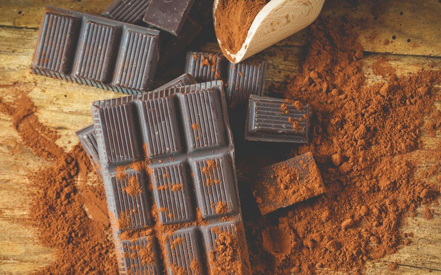 D'abord reconnu par le peuple maya, puis adopté en Europe comme breuvage, le chocolat est devenu une préparation raffinée, mais aussi grossièrement imitée par des procédés industriels pour faire face à une demande désormais planétaire. Retrouvez sa véritable histoire et sa vraie nature. © JaroPienza, Shutterstock
