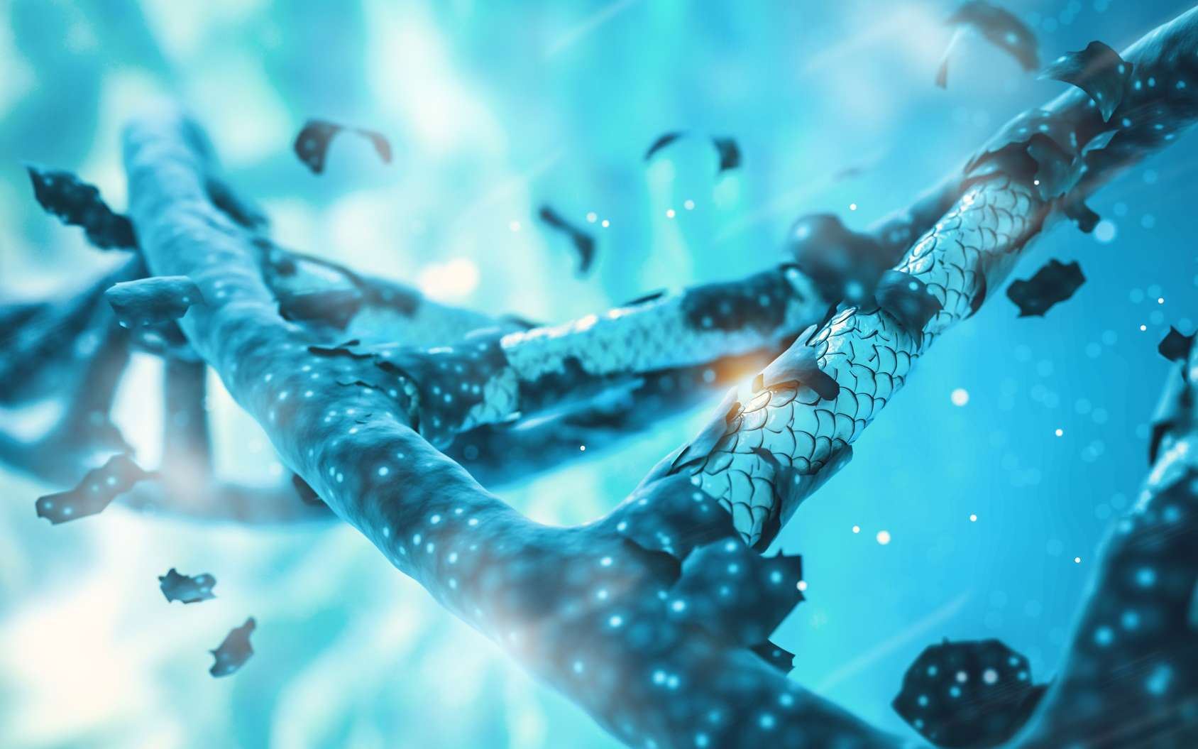Une vidéo exceptionnelle, ou plutôt un GIF animé, montre le complexe CRISPR-Cas9 en train de couper de l'ADN. © catalin, Fotolia