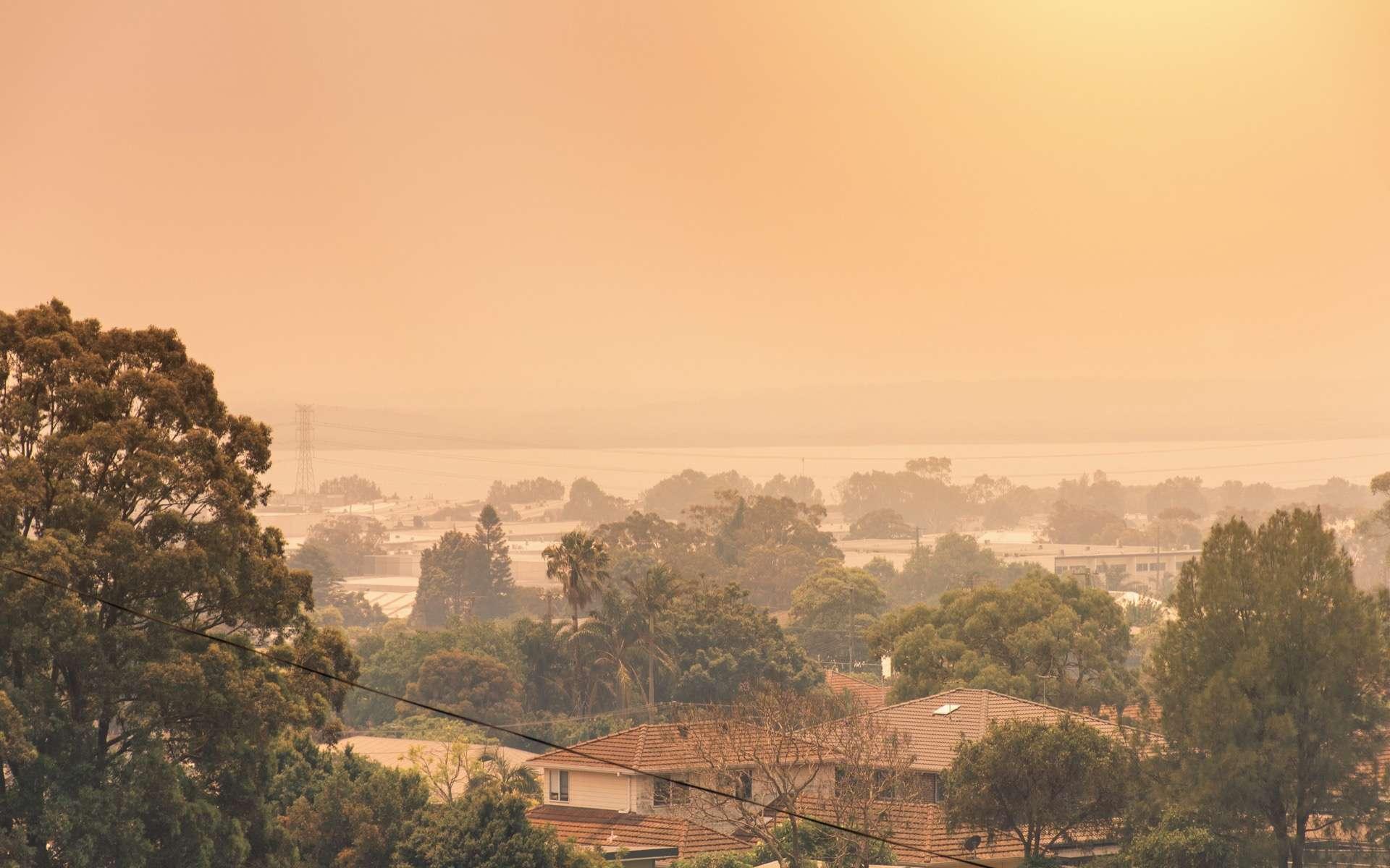 Depuis trois mois, l'Australie est confronté aux pires incendies que le pays ait connu. Un épais brouillard de fumées toxiques dégagé par les feux de forêts envahit l'est du continent. © Darian Ni, Adobe Stock